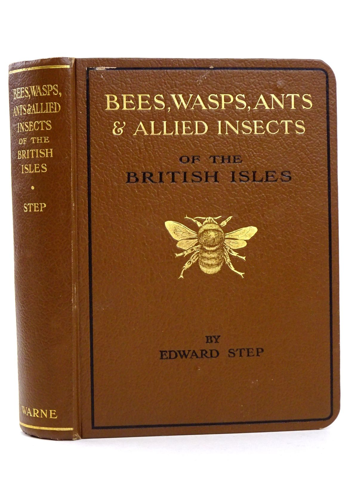 Photo of BEES, WASPS, ANTS & ALLIED INSECTS OF THE BRITISH ISLES- Stock Number: 1818319