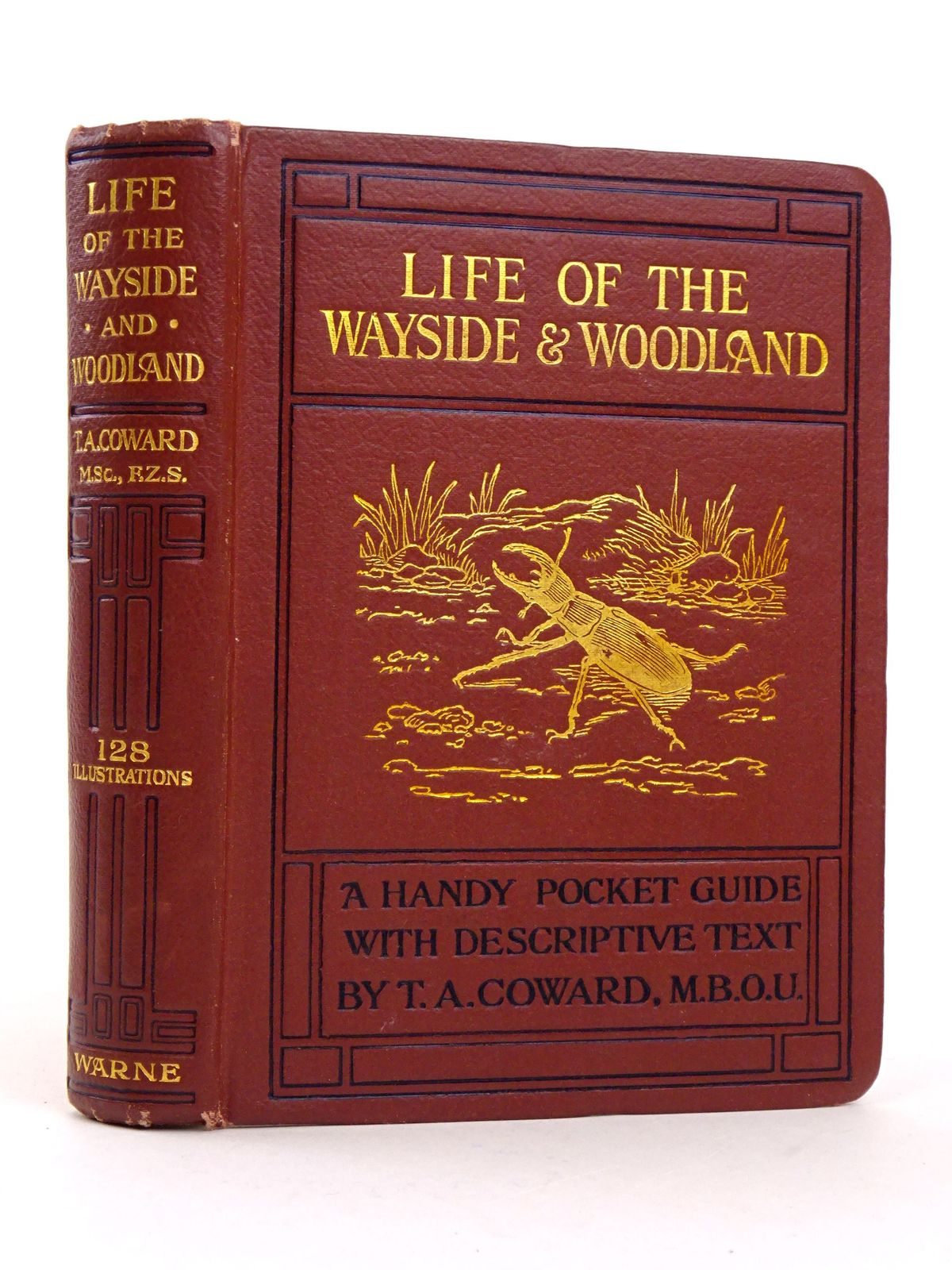 Photo of LIFE OF THE WAYSIDE & WOODLAND written by Coward, T.A. published by Frederick Warne & Co Ltd. (STOCK CODE: 1818322)  for sale by Stella & Rose's Books