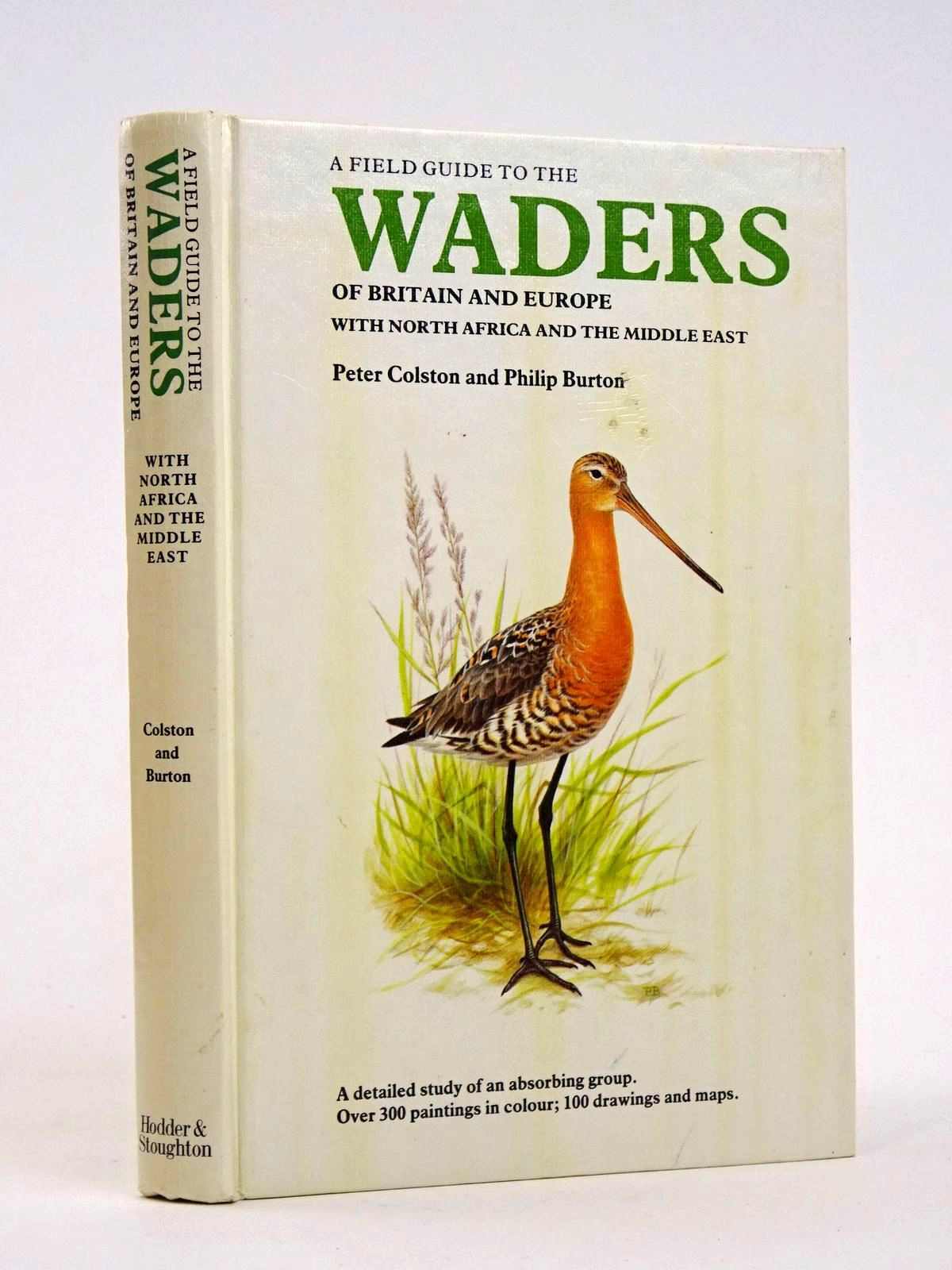 Photo of A FIELD GUIDE TO THE WADERS OF BRITAIN AND EUROPE WITH NORTH AFRICA AND THE MIDDLE EAST written by Colston, Peter illustrated by Burton, Philip published by Hodder & Stoughton (STOCK CODE: 1818330)  for sale by Stella & Rose's Books