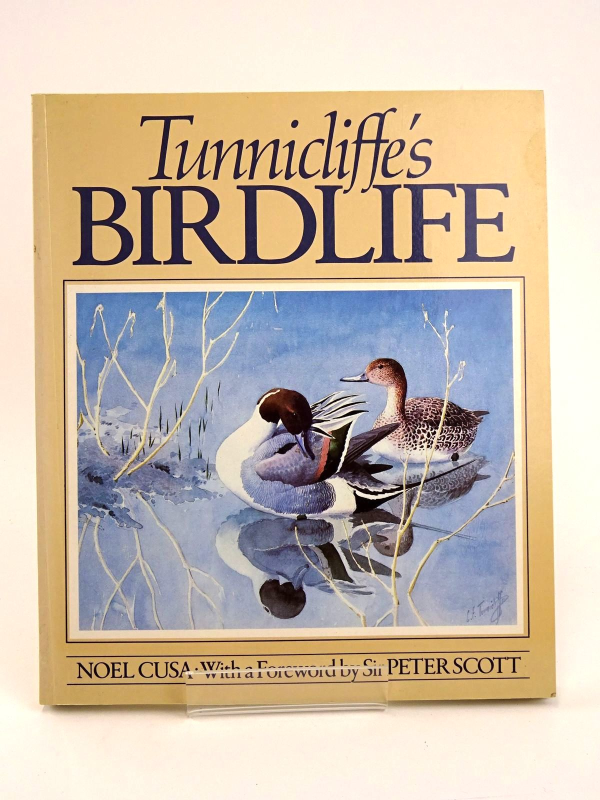 Photo of TUNNICLIFFE'S BIRDLIFE- Stock Number: 1818345