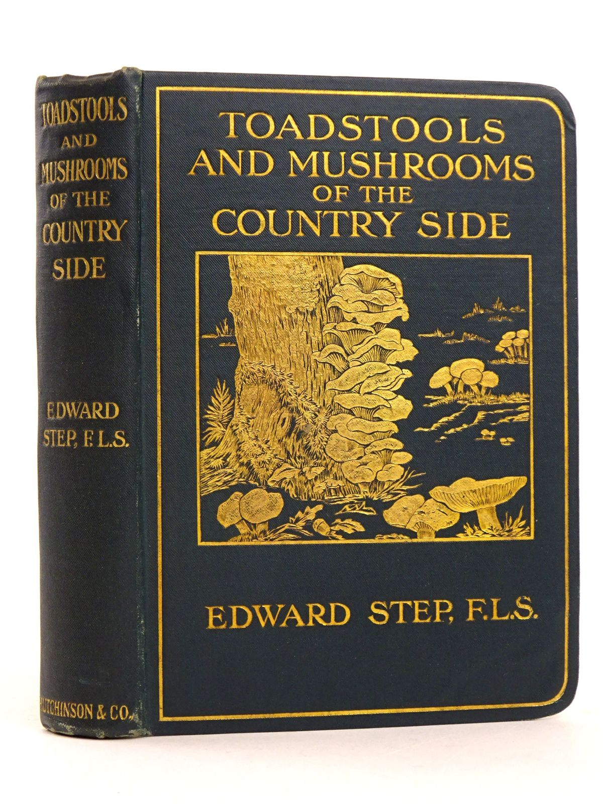 Photo of TOADSTOOLS AND MUSHROOMS OF THE COUNTRYSIDE written by Step, Edward published by Hutchinson & Co. (STOCK CODE: 1818395)  for sale by Stella & Rose's Books