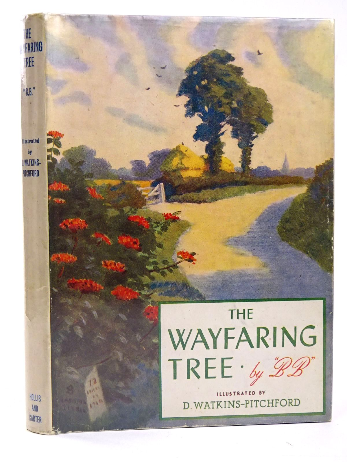 Photo of THE WAYFARING TREE- Stock Number: 1818524