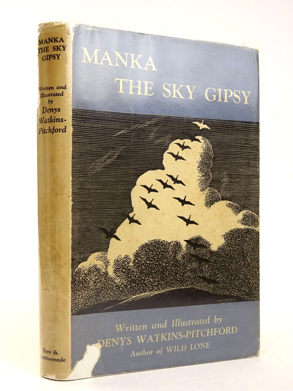 Photo of MANKA THE SKY GIPSY- Stock Number: 1818531