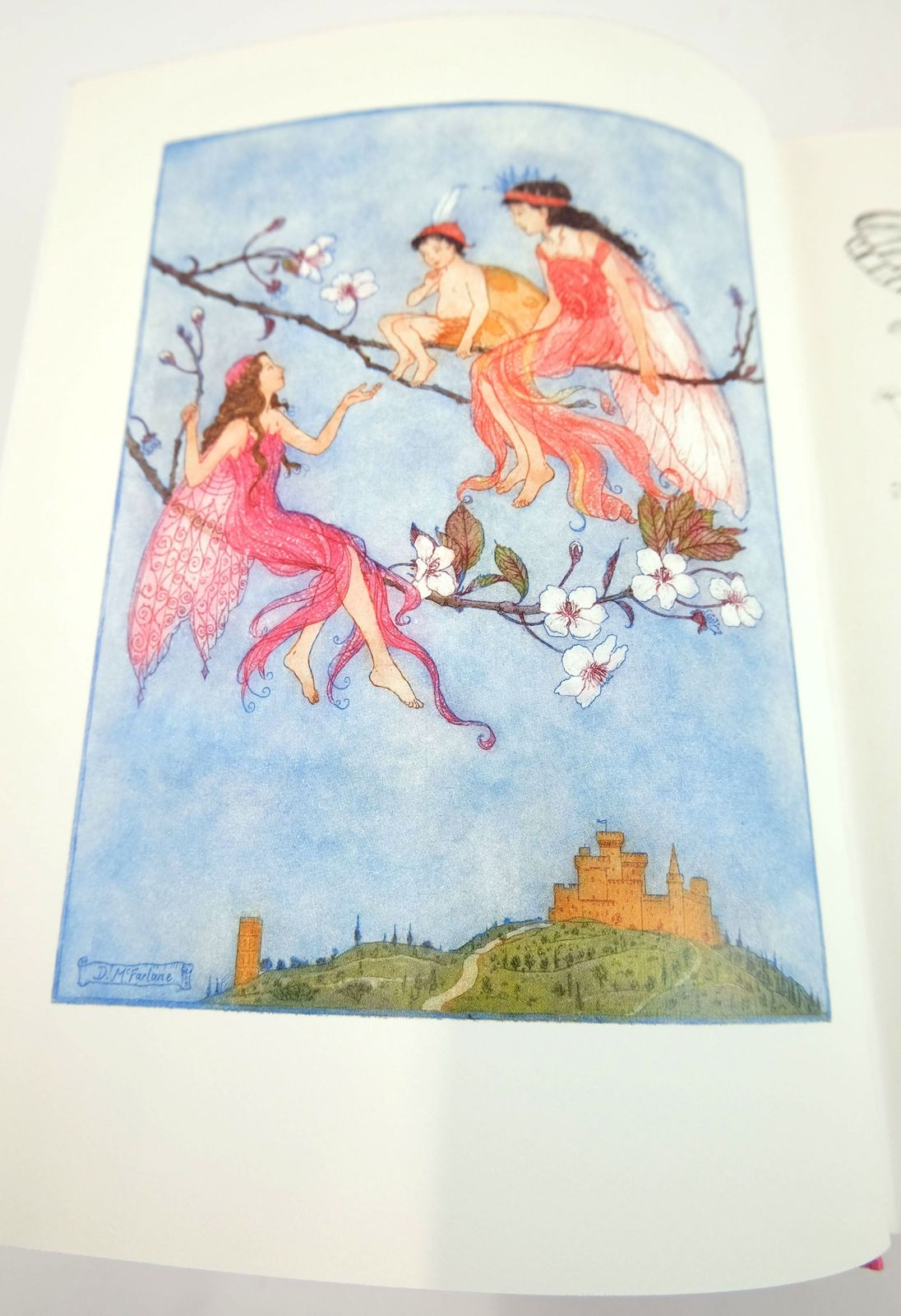 Photo of THE PINK FAIRY BOOK written by Lang, Andrew illustrated by McFarlane, Debra published by Folio Society (STOCK CODE: 1818915)  for sale by Stella & Rose's Books