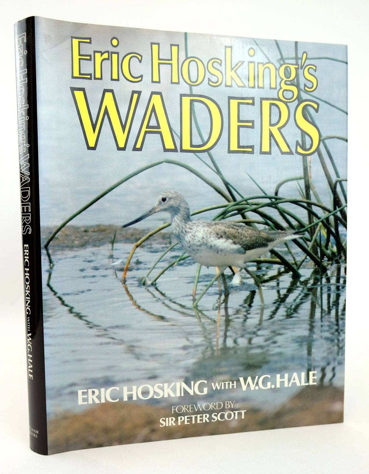 Photo of ERIC HOSKING'S WADERS- Stock Number: 1819025