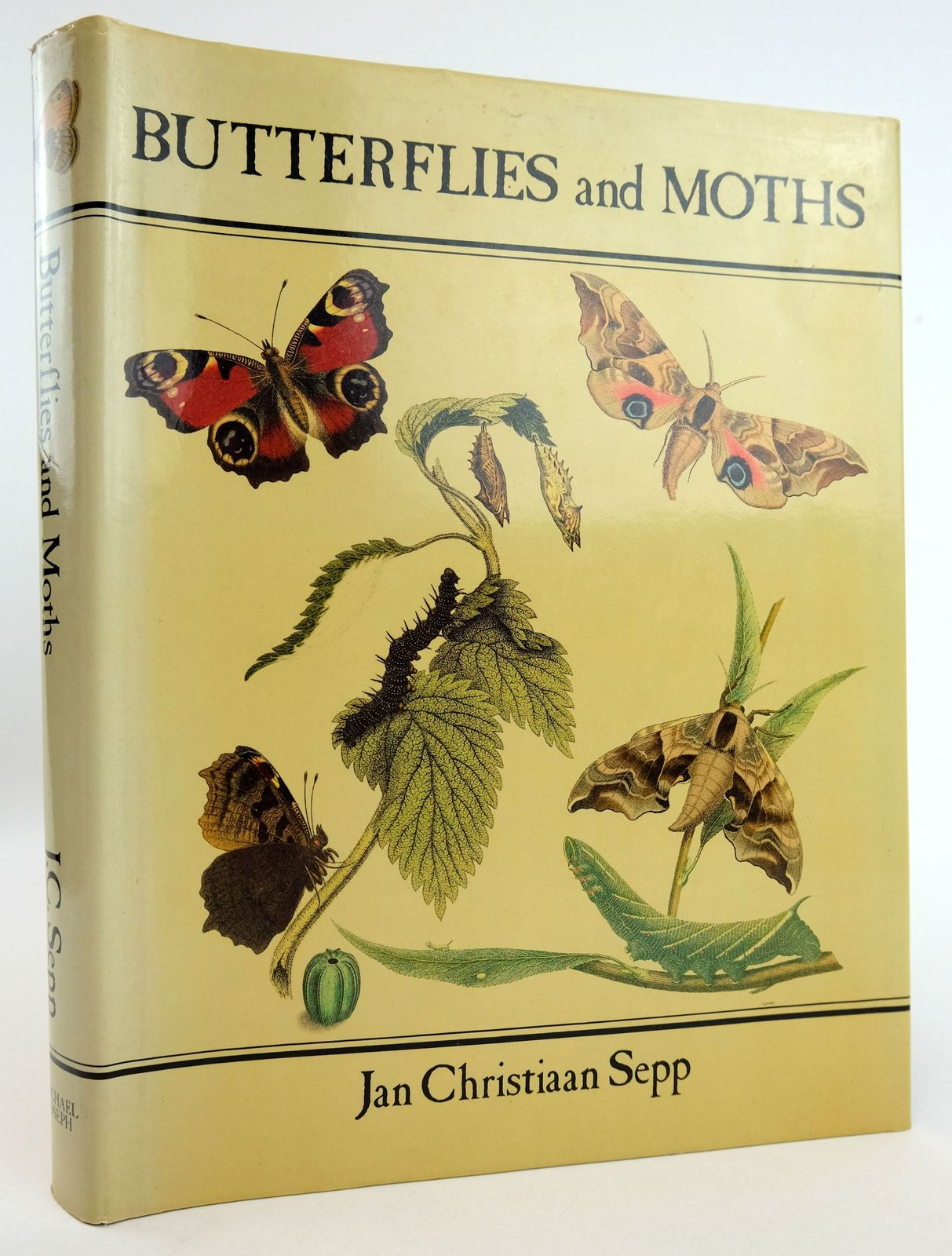 Photo of BUTTERFLIES AND MOTHS written by McNeill, Stuart illustrated by Sepp, Christian Sepp, Jan Christiaan published by Michael Joseph (STOCK CODE: 1819072)  for sale by Stella & Rose's Books