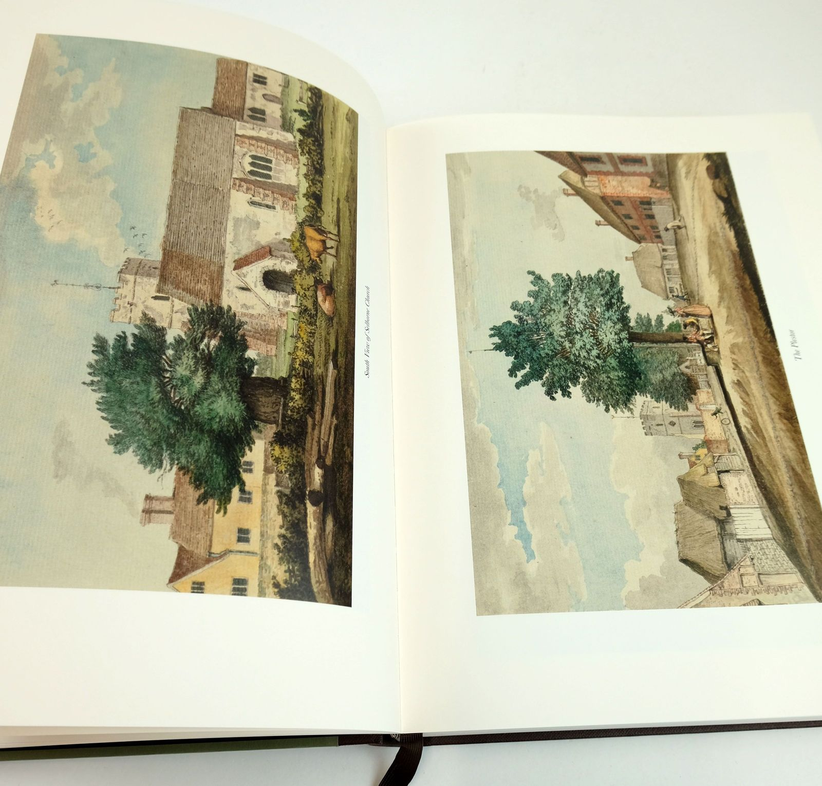 Photo of THE NATURAL HISTORY OF SELBORNE written by White, Gilbert Thomas, Keith published by Folio Society (STOCK CODE: 1819095)  for sale by Stella & Rose's Books