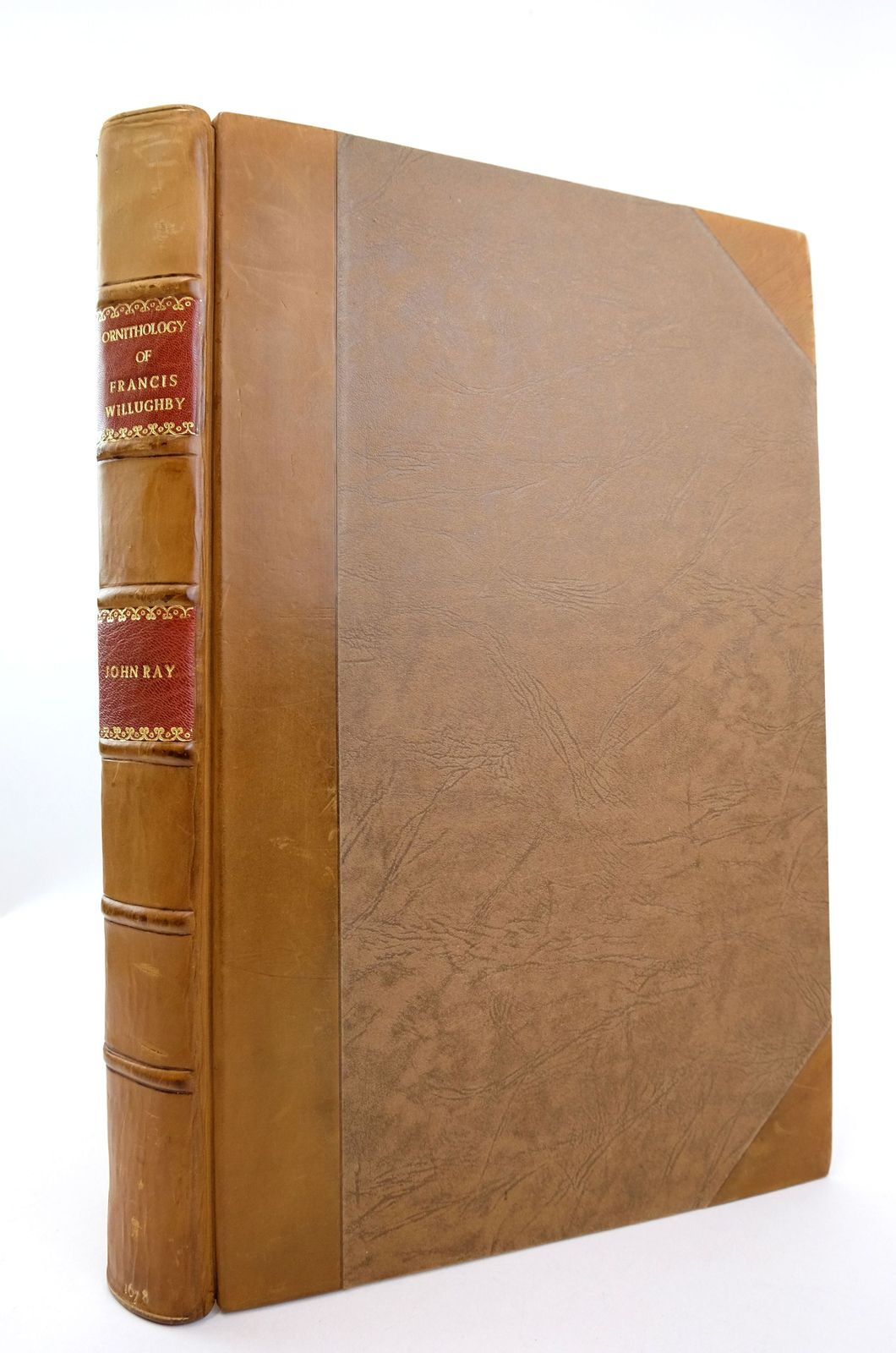 Photo of THE ORNITHOLOGY OF FRANCIS WILLUGHBY OF MIDDLETON IN THE COUNTY OF WARWICK written by Ray, John published by John Martyn (STOCK CODE: 1819111)  for sale by Stella & Rose's Books
