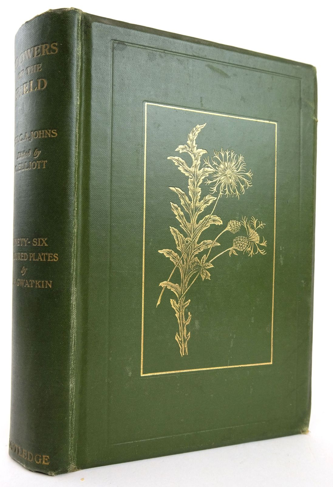 Photo of FLOWERS OF THE FIELD written by Johns, Rev C.A. Elliott, Clarence illustrated by Gwatkin, E.N. published by George Routledge and Sons Limited (STOCK CODE: 1819226)  for sale by Stella & Rose's Books