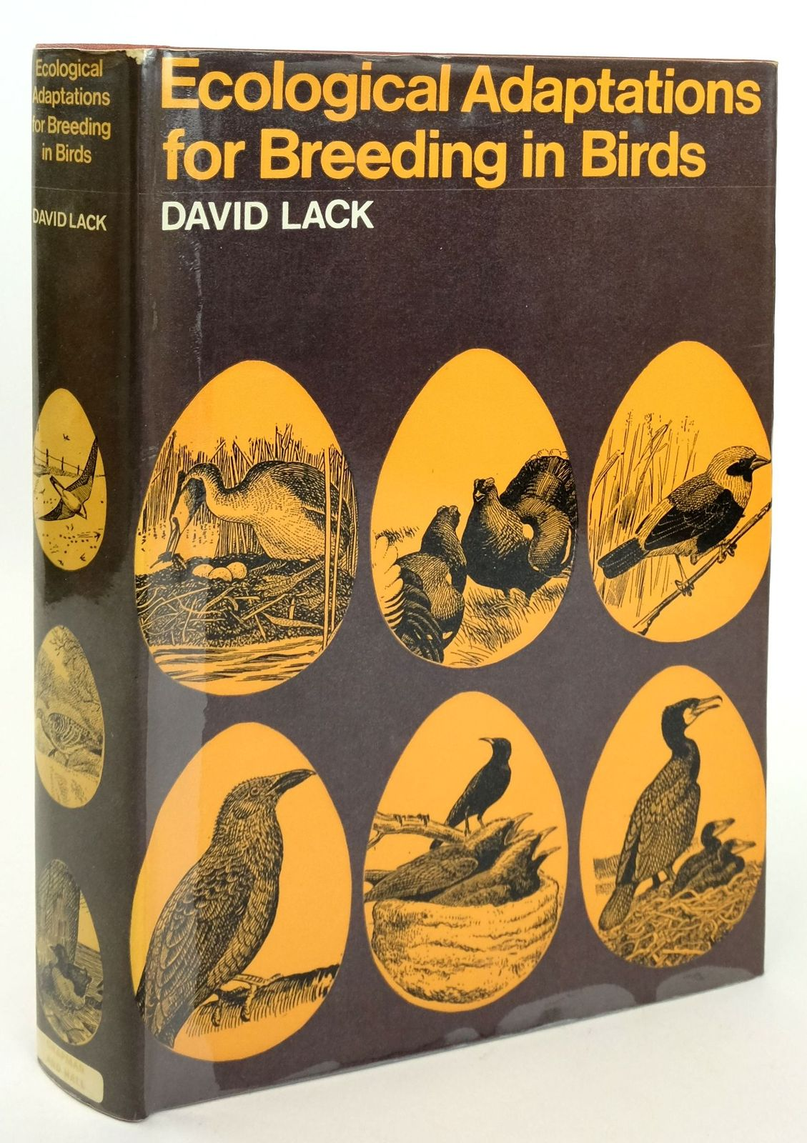 Photo of ECOLOGICAL ADAPTATIONS FOR BREEDING IN BIRDS written by Lack, David illustrated by Gillmor, Robert published by Chapman & Hall (STOCK CODE: 1819228)  for sale by Stella & Rose's Books