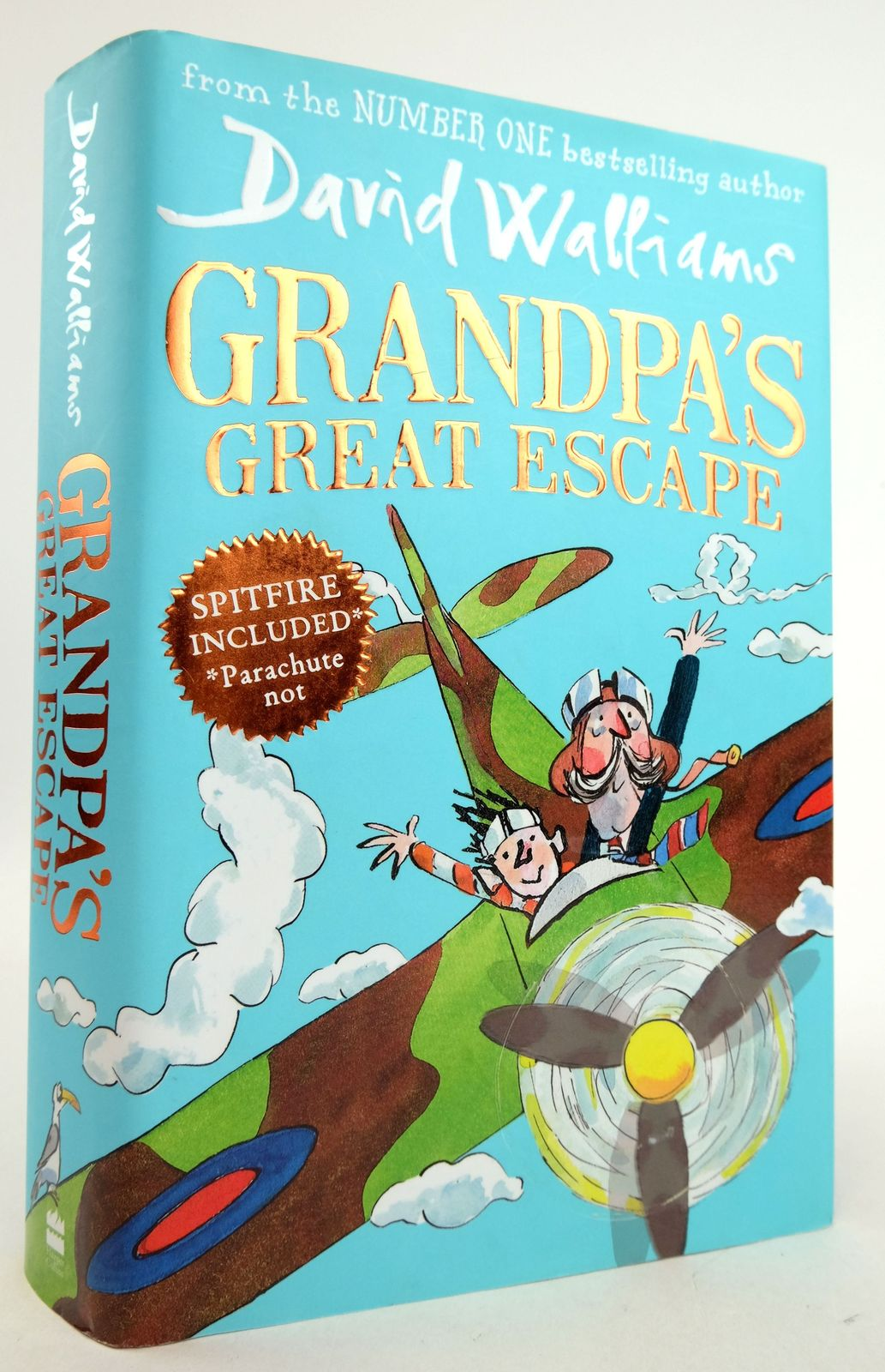 Photo of GRANDPA'S GREAT ESCAPE- Stock Number: 1819947