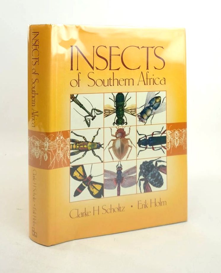 Photo of INSECTS OF SOUTHERN AFRICA- Stock Number: 1821276