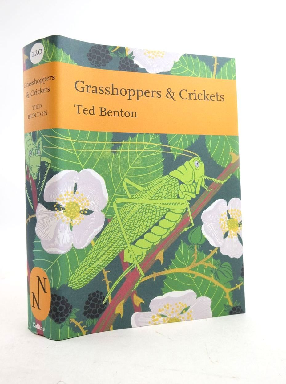 Photo of GRASSHOPPERS & CRICKETS (NN 120)- Stock Number: 1821646