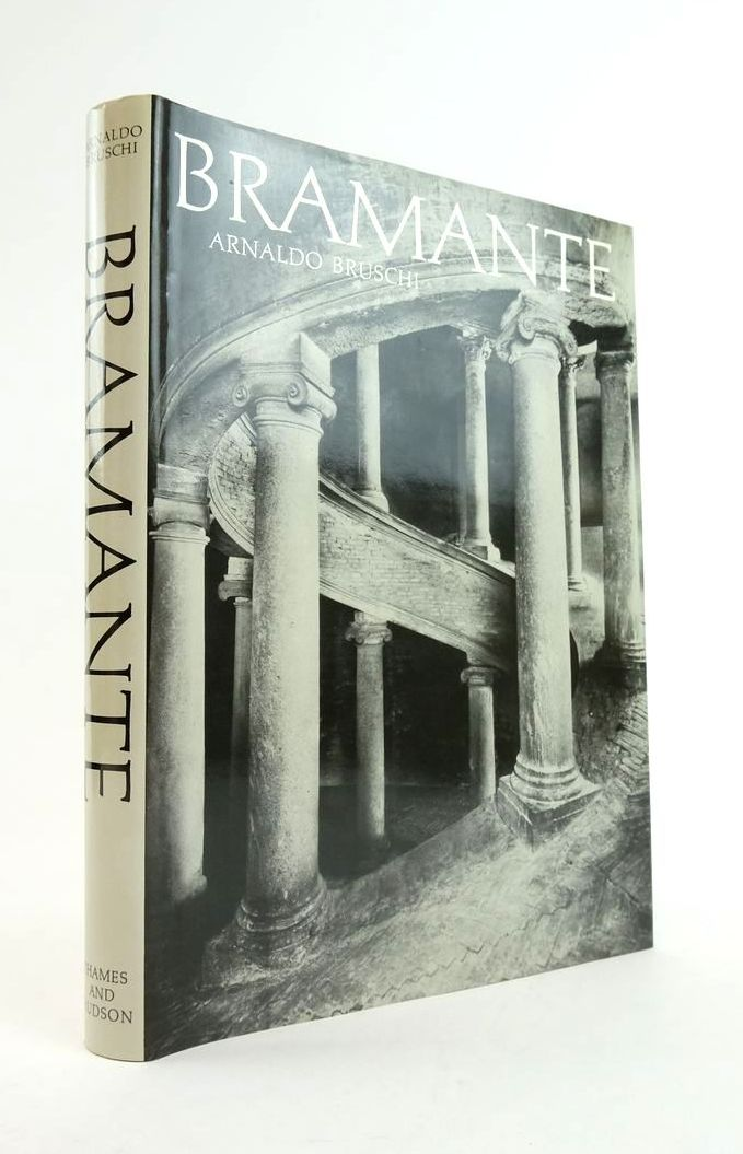 Photo of BRAMANTE- Stock Number: 1822156