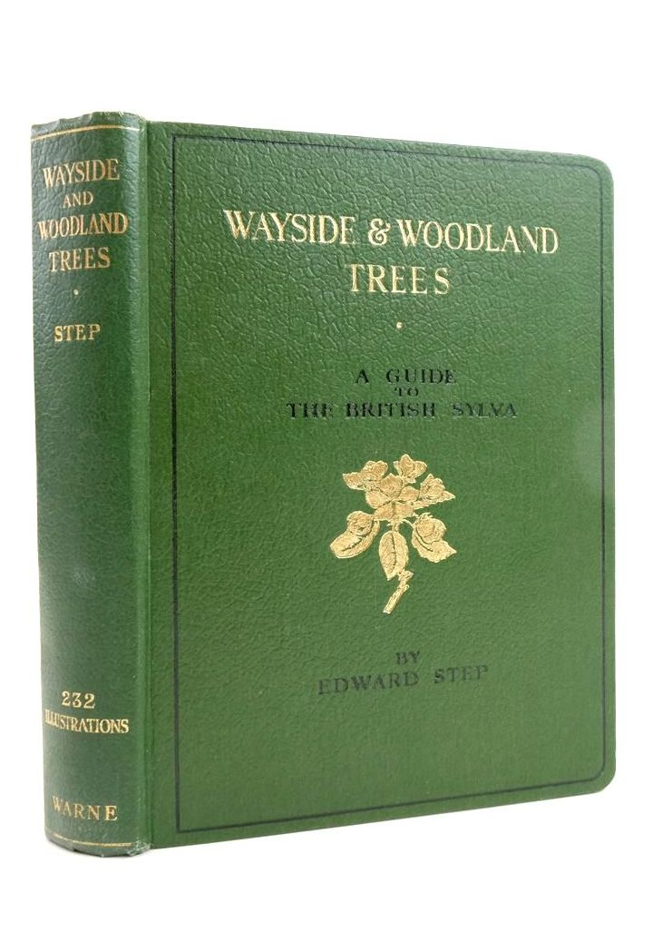 Photo of WAYSIDE AND WOODLAND TREES- Stock Number: 1822352