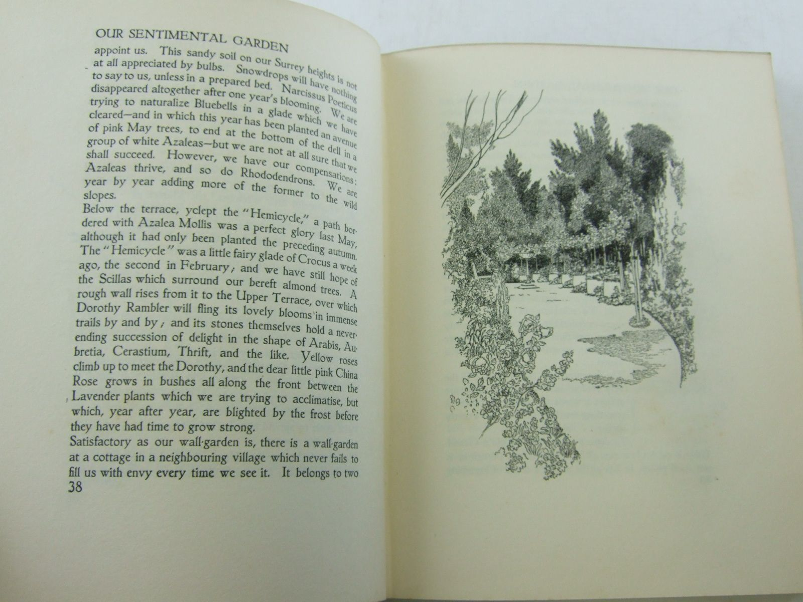 Photo of OUR SENTIMENTAL GARDEN written by Castle, Agnes Castle, Egerton illustrated by Robinson, Charles published by William Heinemann (STOCK CODE: 2106665)  for sale by Stella & Rose's Books