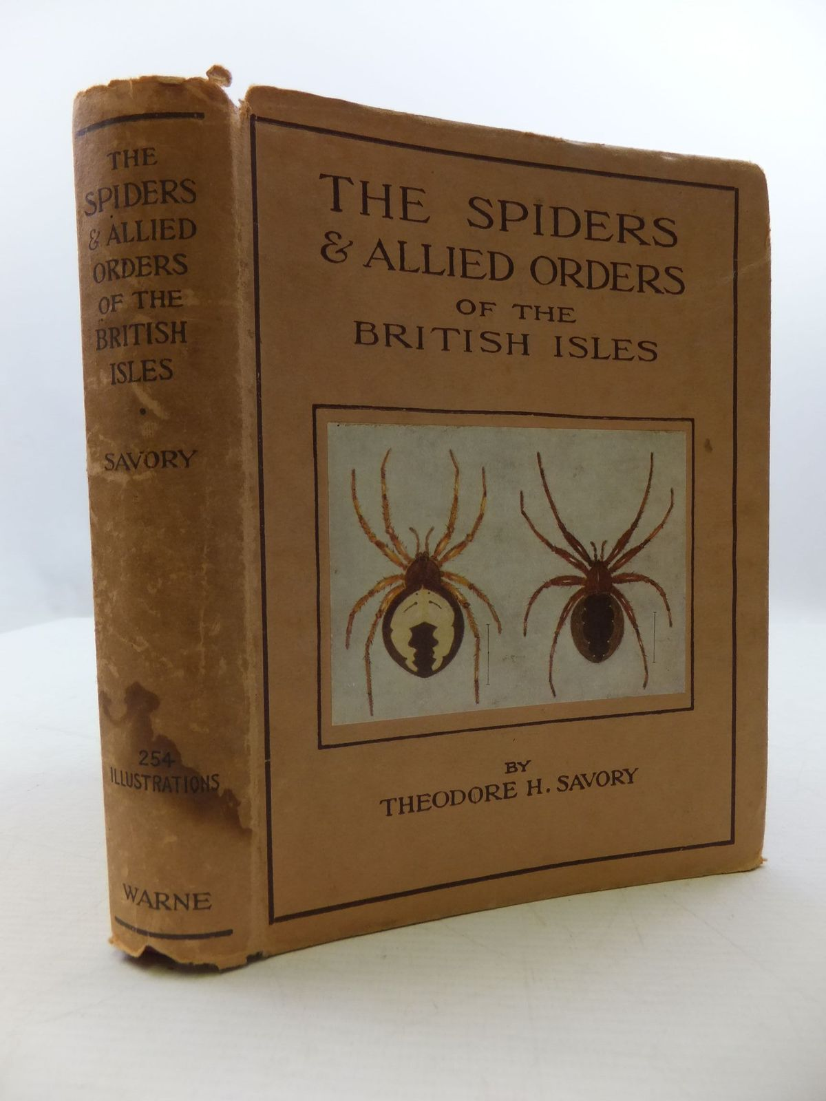 Photo of THE SPIDERS AND ALLIED ORDERS OF THE BRITISH ISLES written by Savory, Theodore H. illustrated by Brummitt, Florence M. published by Frederick Warne & Co Ltd. (STOCK CODE: 2110344)  for sale by Stella & Rose's Books