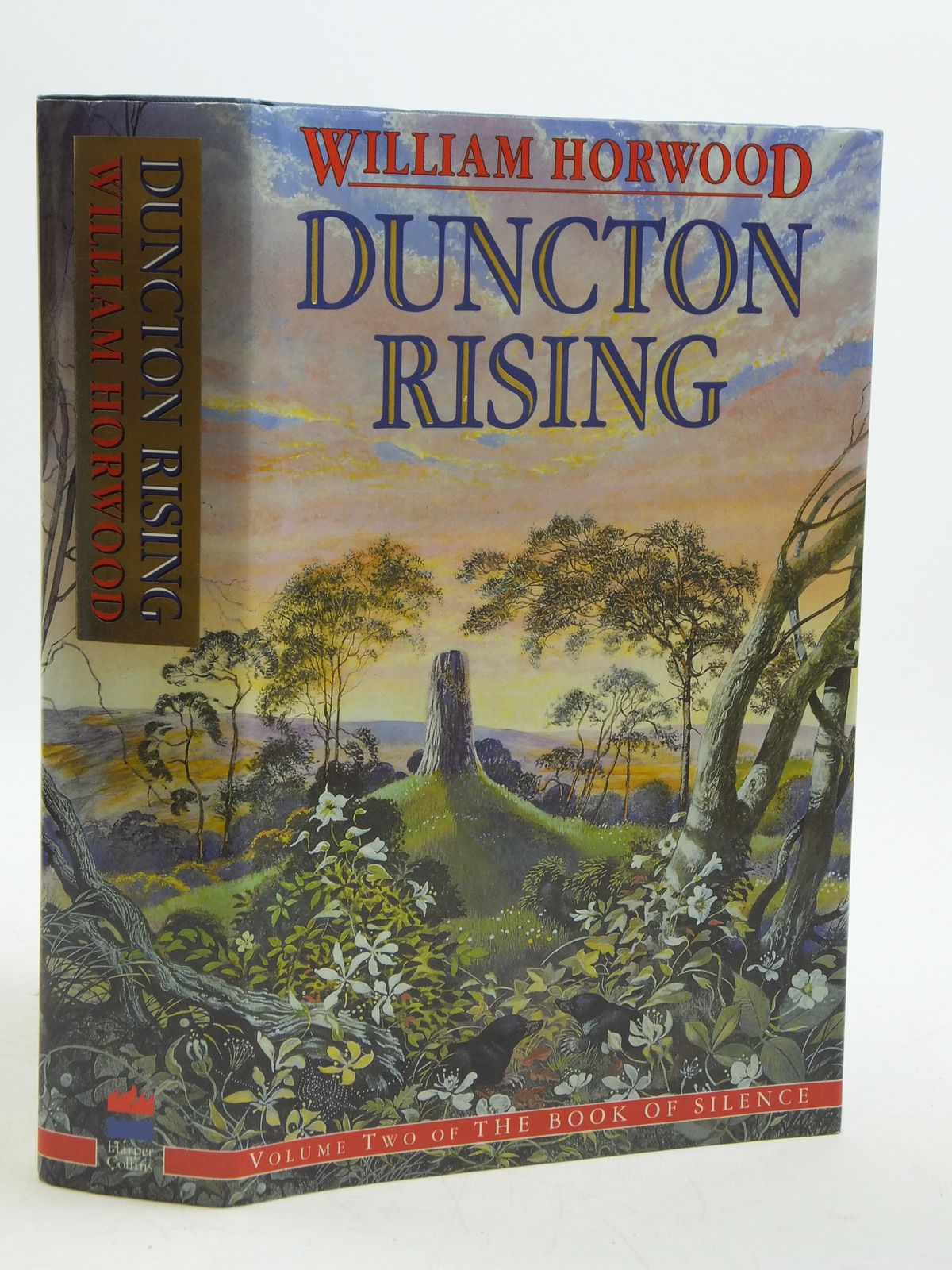 Photo of DUNCTON RISING- Stock Number: 2110716