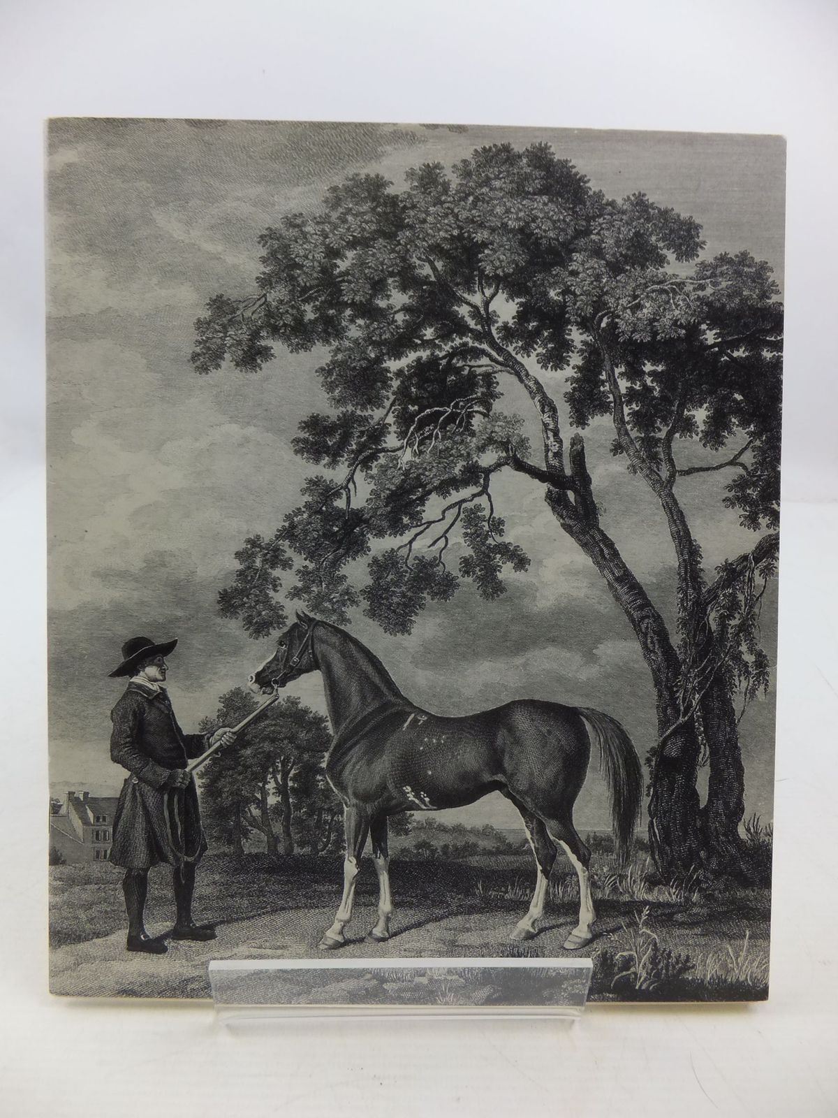 Photo of THE ENTERPRISING MR STUBBS published by Arthur Ackermann (STOCK CODE: 2111209)  for sale by Stella & Rose's Books
