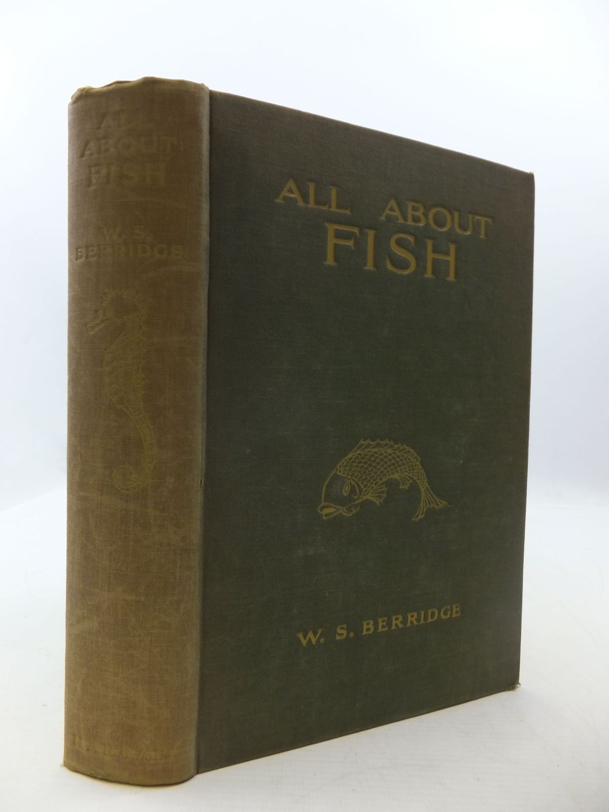 Photo of ALL ABOUT FISH- Stock Number: 2111364