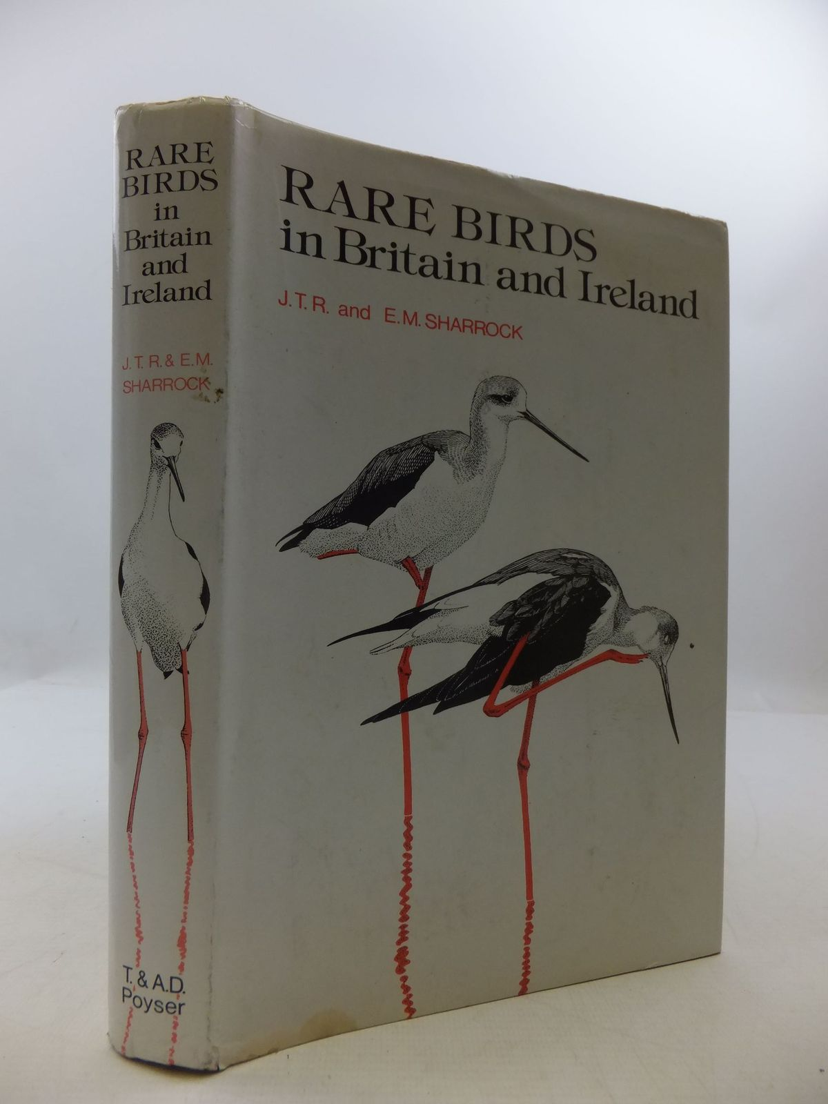 Photo of RARE BIRDS IN BRITAIN AND IRELAND- Stock Number: 2111479