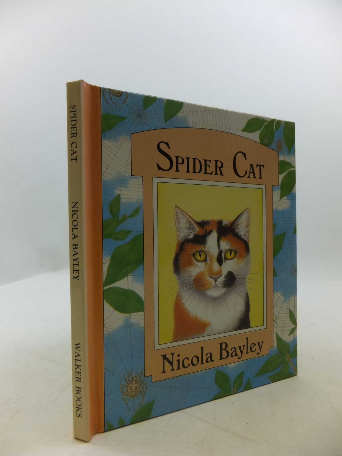 Photo of SPIDER CAT written by Bayley, Nicola illustrated by Bayley, Nicola published by Walker Books (STOCK CODE: 2111597)  for sale by Stella & Rose's Books