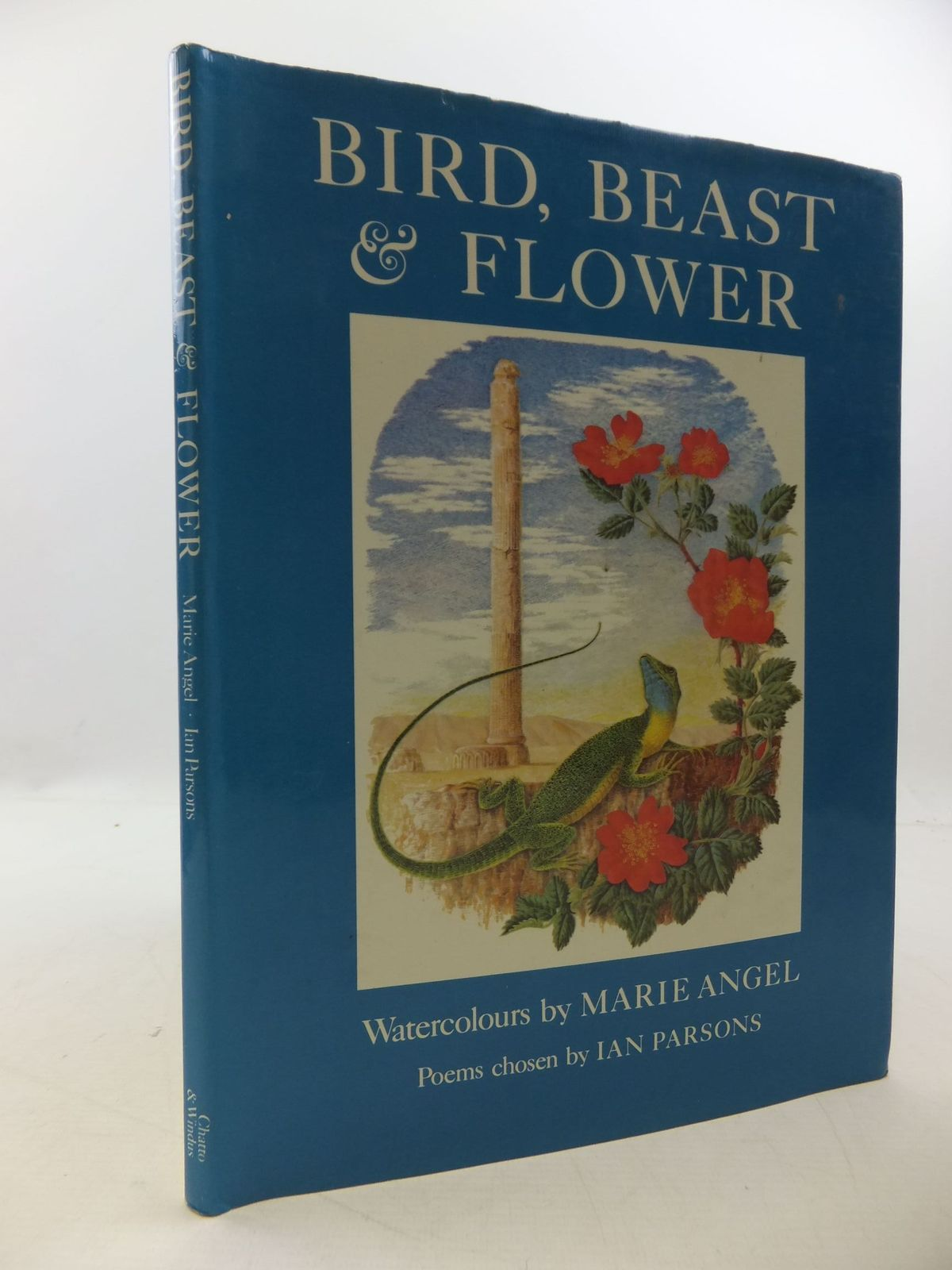 Photo of BIRD, BEAST AND FLOWER- Stock Number: 2112600