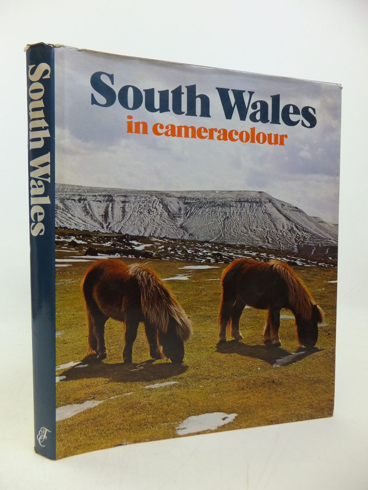 Photo of SOUTH WALES IN CAMERACOLOUR written by Forss, Derek published by Town County Books (STOCK CODE: 2113195)  for sale by Stella & Rose's Books