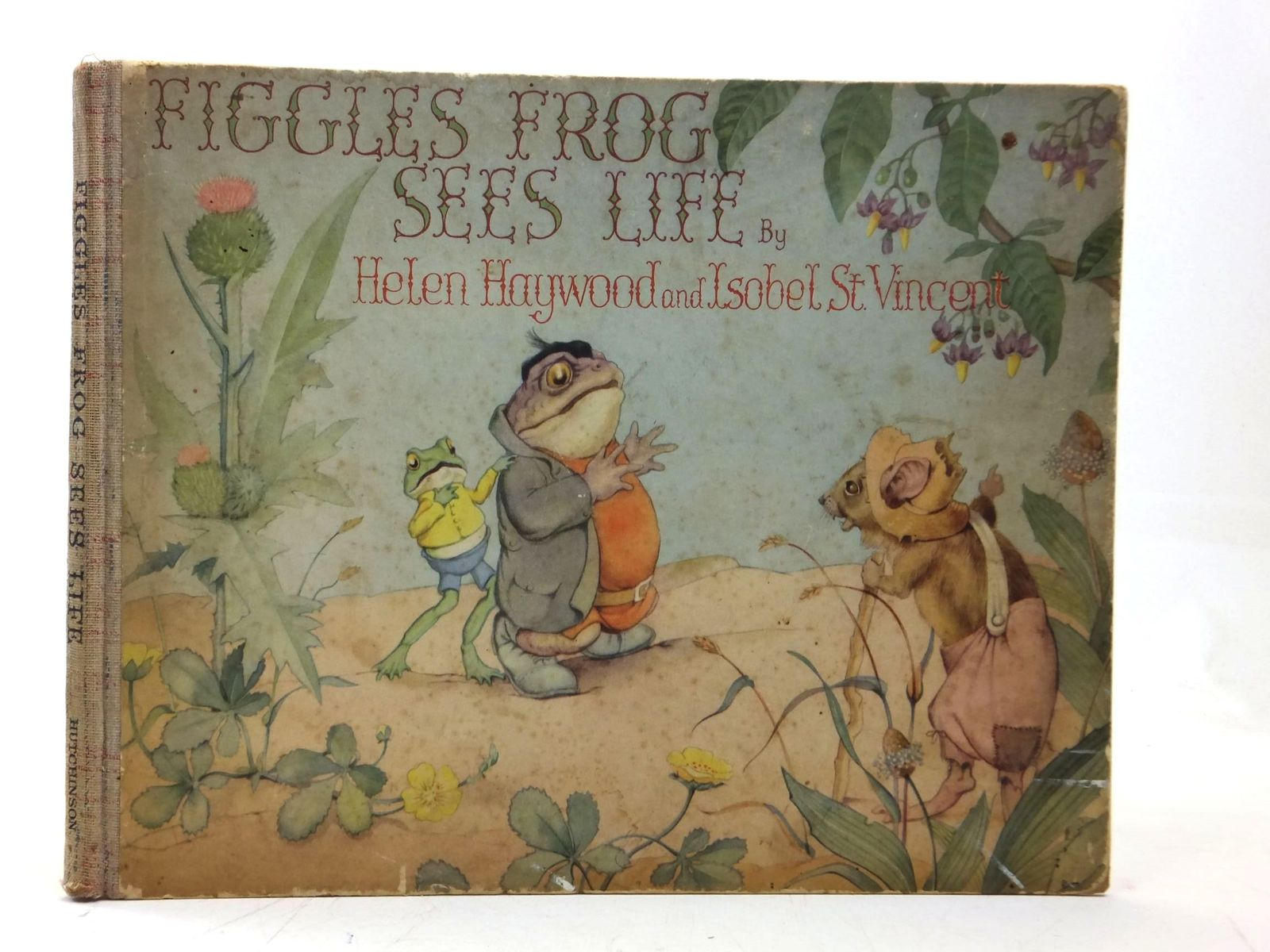 Photo of FIGGLES FROG SEES LIFE- Stock Number: 2115443