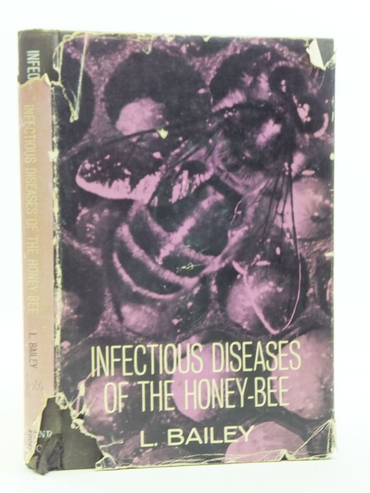 Photo of INFECTIOUS DISEASES OF THE HONEY-BEE- Stock Number: 2119554