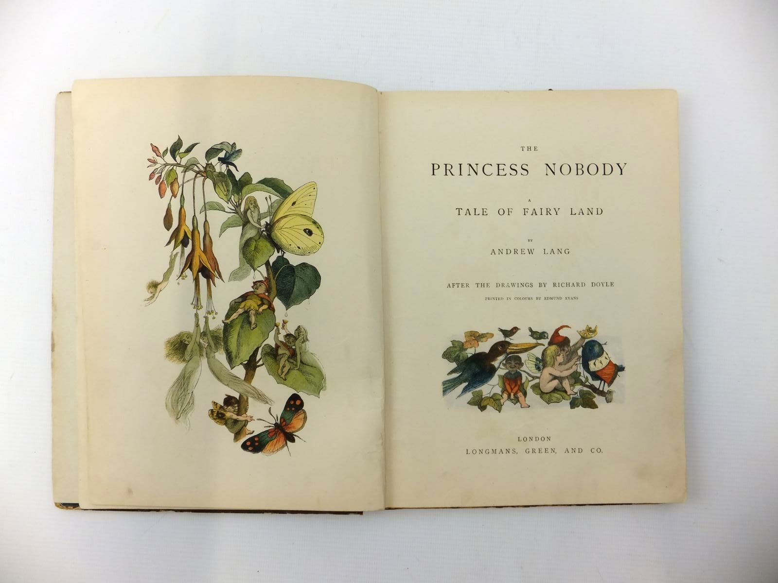 Photo of THE PRINCESS NOBODY written by Lang, Andrew illustrated by Doyle, Richard<br />Evans, Edmund published by Longmans, Green &amp; Co. (STOCK CODE: 2123409)  for sale by Stella & Rose's Books
