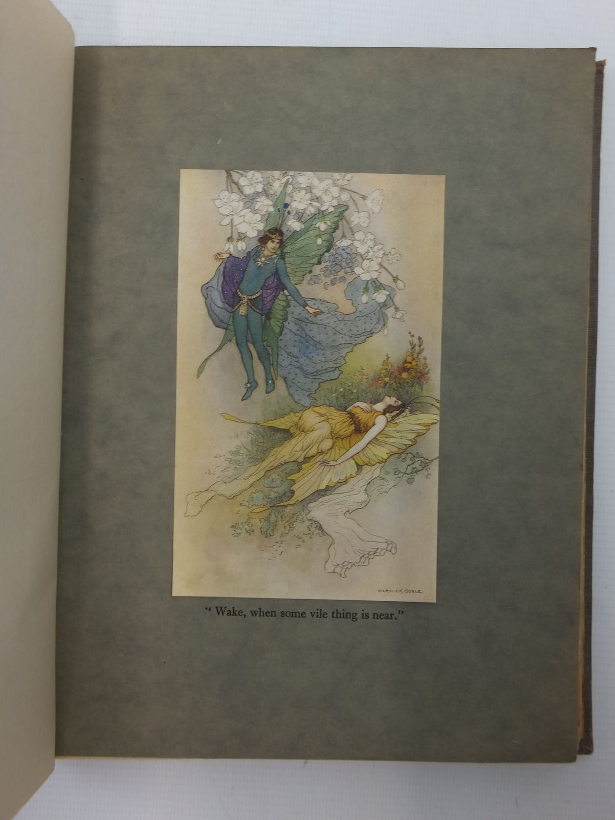 Photo of THE BOOK OF FAIRY POETRY written by Owen, Dora illustrated by Goble, Warwick published by Longmans, Green & Co. (STOCK CODE: 2123940)  for sale by Stella & Rose's Books