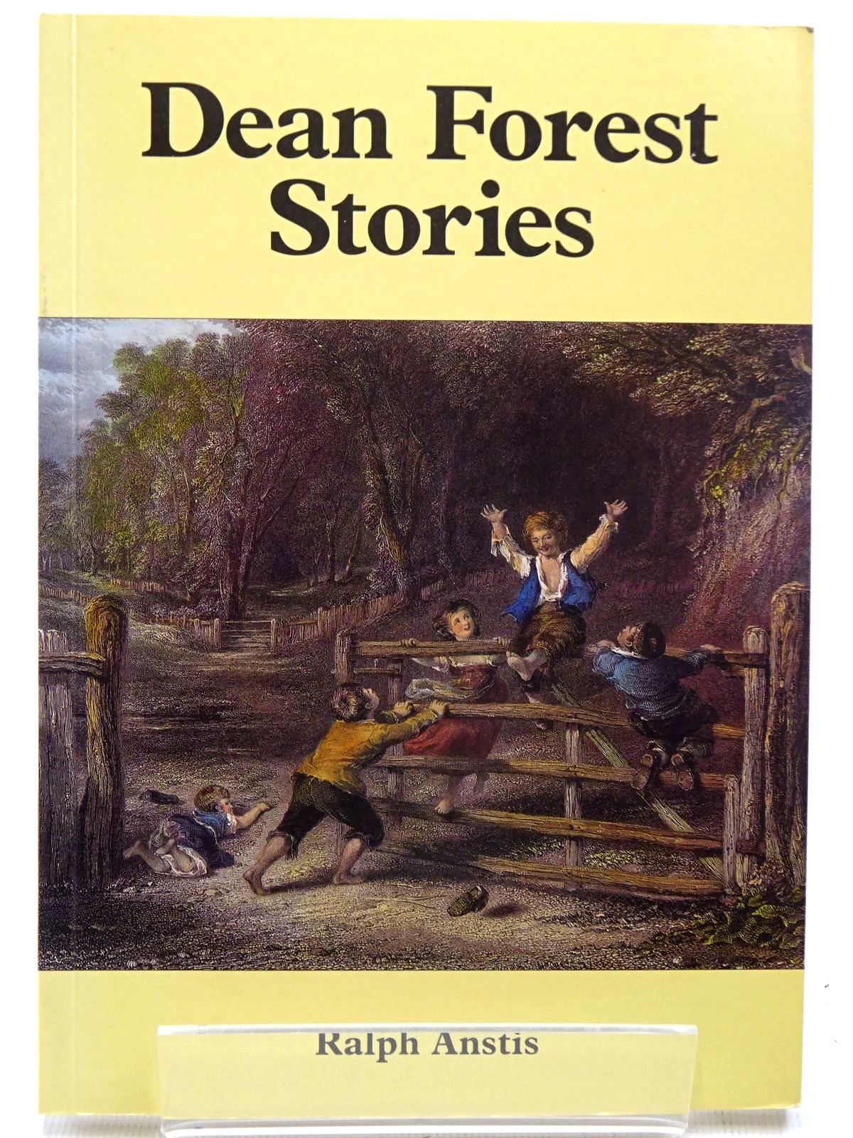 Photo of DEAN FOREST STORIES- Stock Number: 2126396