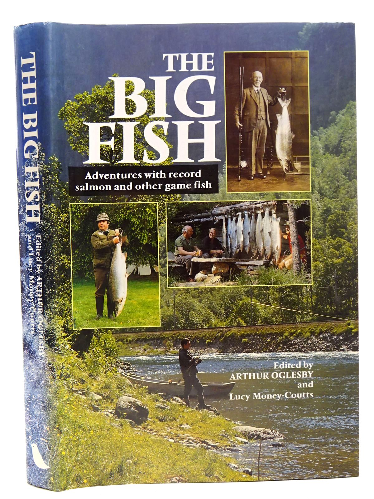 Photo of THE BIG FISH written by Oglesby, Arthur<br />Money-Coutts, Lucy published by Robinson Publishing (STOCK CODE: 2126569)  for sale by Stella & Rose's Books