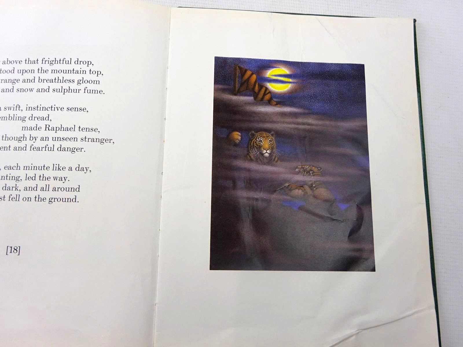 Photo of THE TYGER VOYAGE written by Adams, Richard illustrated by Bayley, Nicola published by Jonathan Cape (STOCK CODE: 2127433)  for sale by Stella & Rose's Books