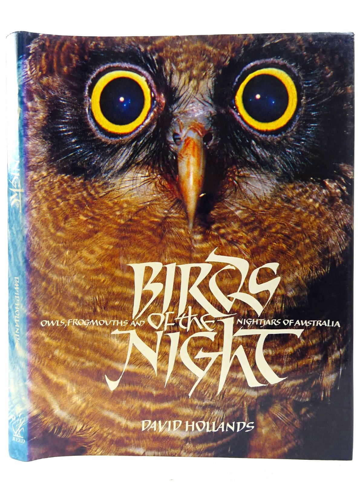 Photo of BIRDS OF THE NIGHT written by Hollands, David published by Reed Books Pty Ltd. (STOCK CODE: 2127661)  for sale by Stella & Rose's Books