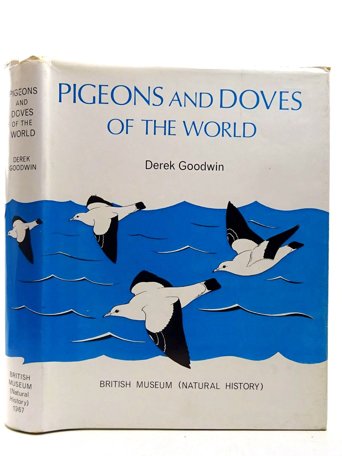 Photo of PIGEONS AND DOVES OF THE WORLD- Stock Number: 2127819