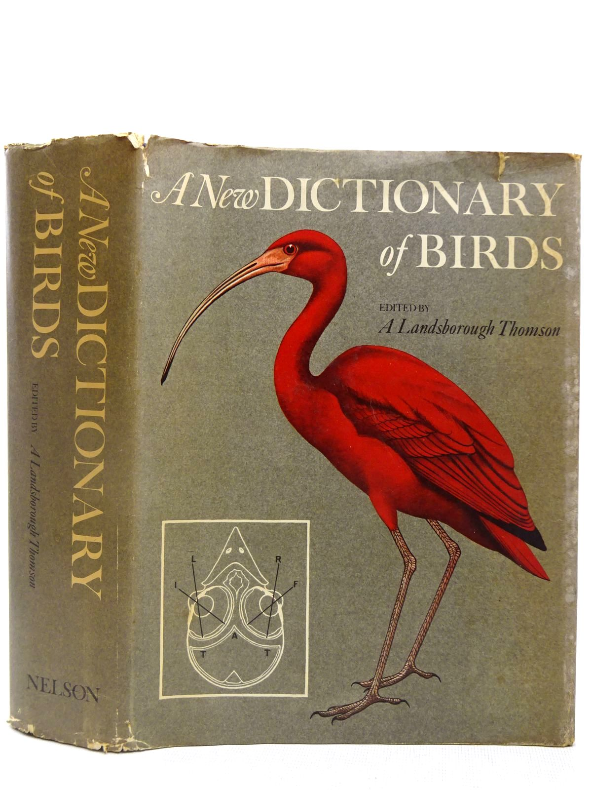 Photo of A NEW DICTIONARY OF BIRDS written by Thomson, A. Landsborough published by Thomas Nelson & Sons (STOCK CODE: 2127943)  for sale by Stella & Rose's Books