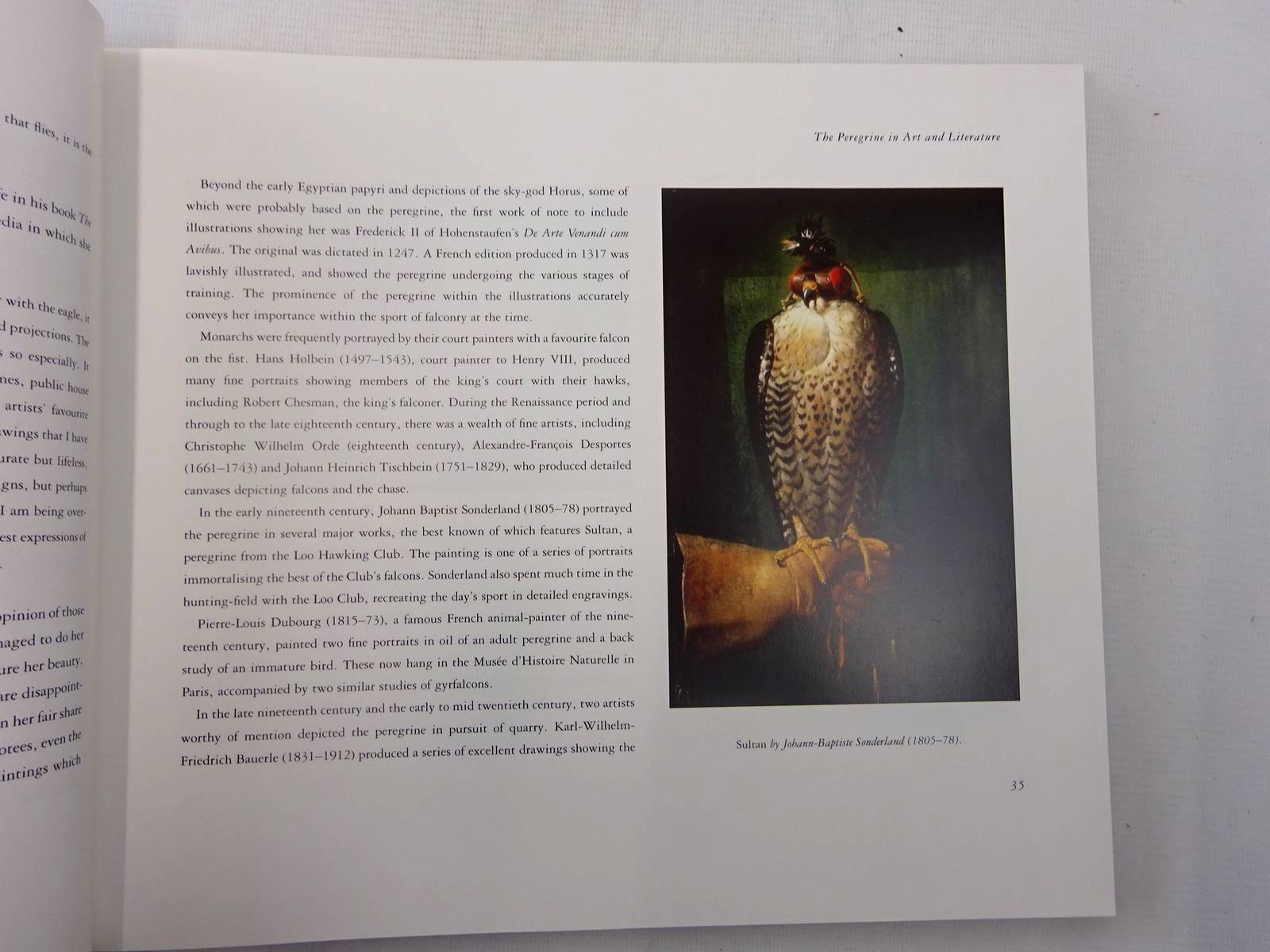 Photo of PEREGRINE written by Ford, Emma illustrated by Rhodes, Antony published by Fourth Estate (STOCK CODE: 2127954)  for sale by Stella & Rose's Books