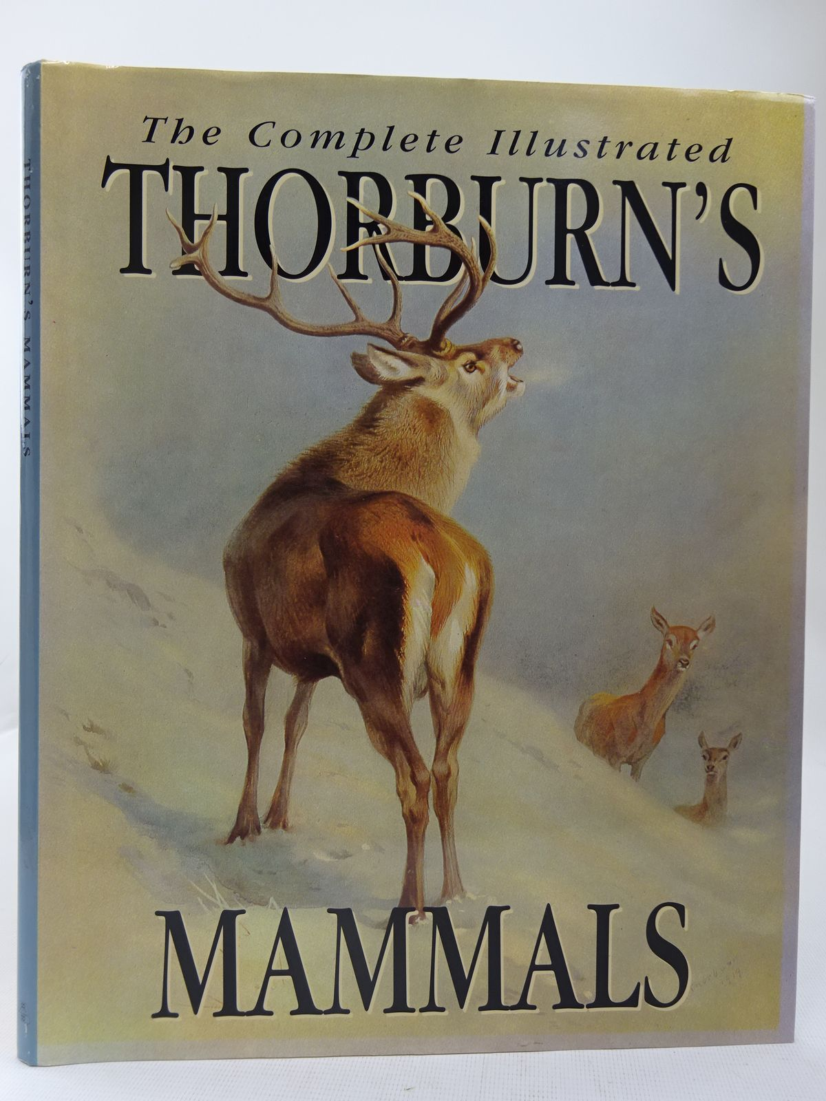 Photo of THE COMPLETE ILLUSTRATED THORBURN'S MAMMALS- Stock Number: 2127979