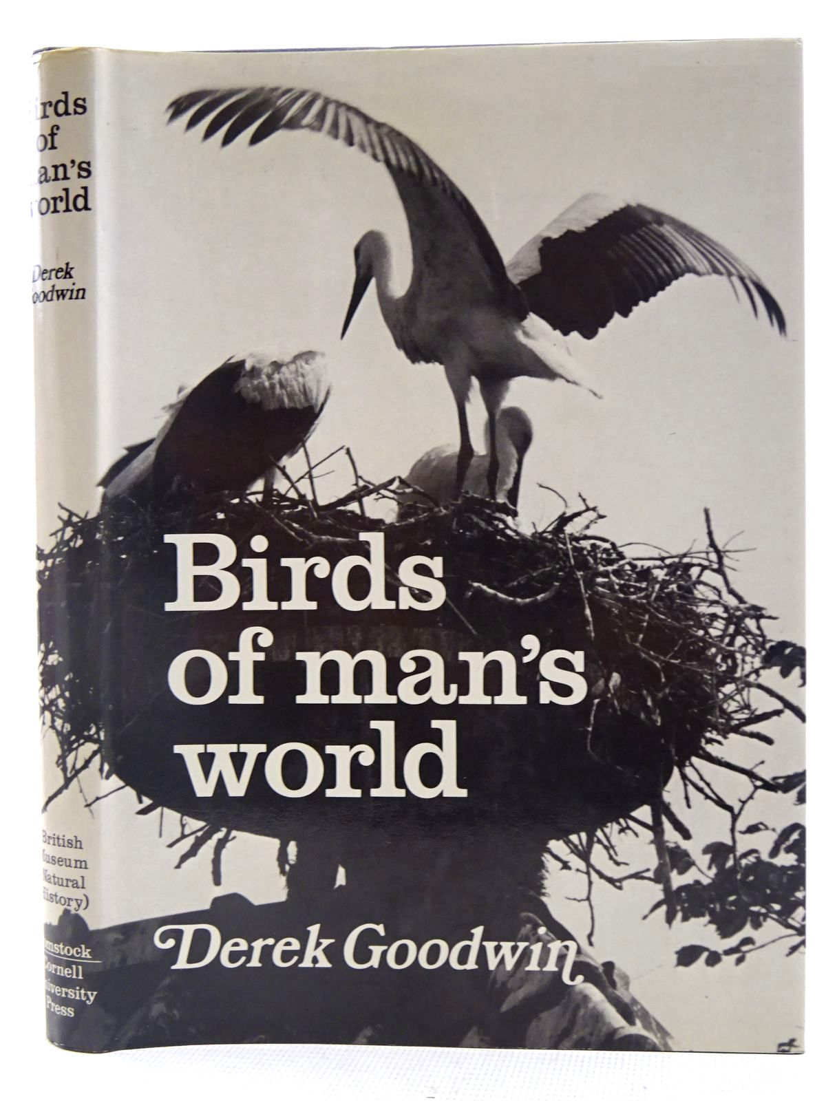 Photo of BIRDS OF MAN'S WORLD written by Goodwin, Derek illustrated by Prytherch, Robin published by British Museum (Natural History), Cornell University Press (STOCK CODE: 2128274)  for sale by Stella & Rose's Books