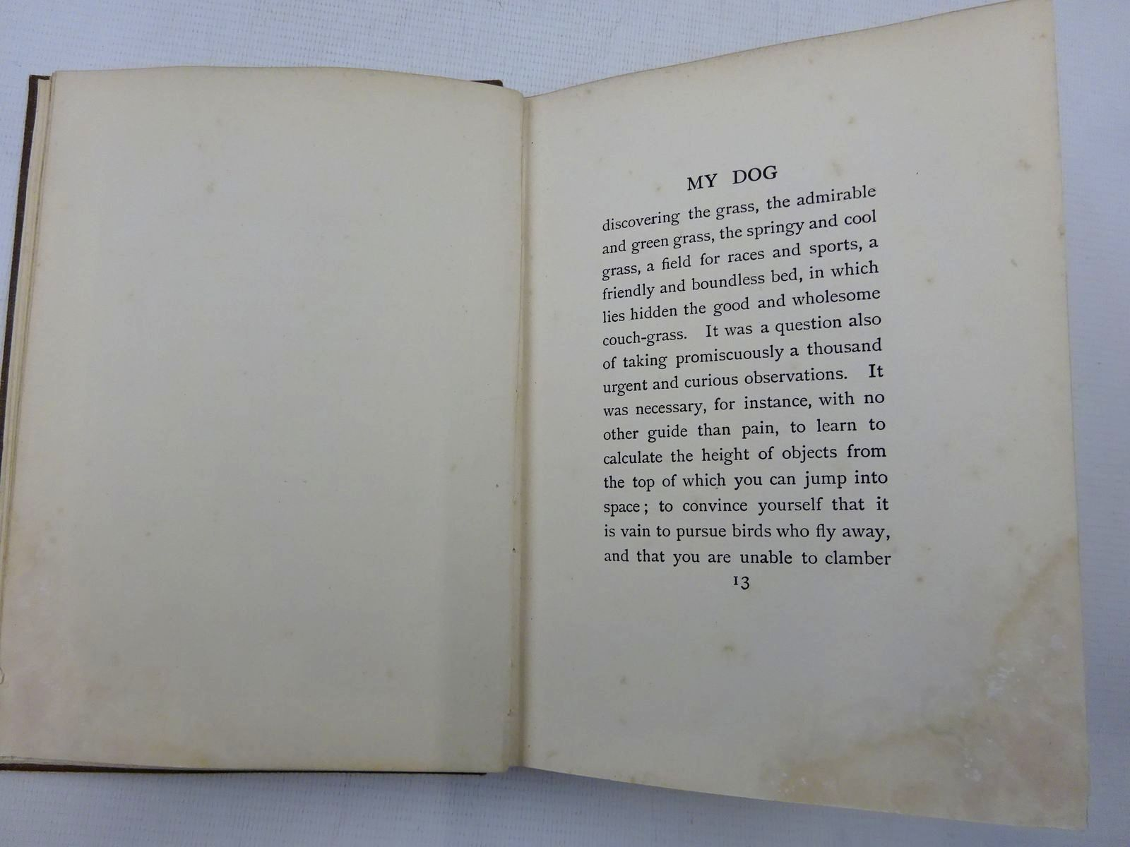 Photo of MY DOG written by Maeterlinck, Maurice illustrated by Aldin, Cecil published by George Allen and Co. Ltd. (STOCK CODE: 2128944)  for sale by Stella & Rose's Books