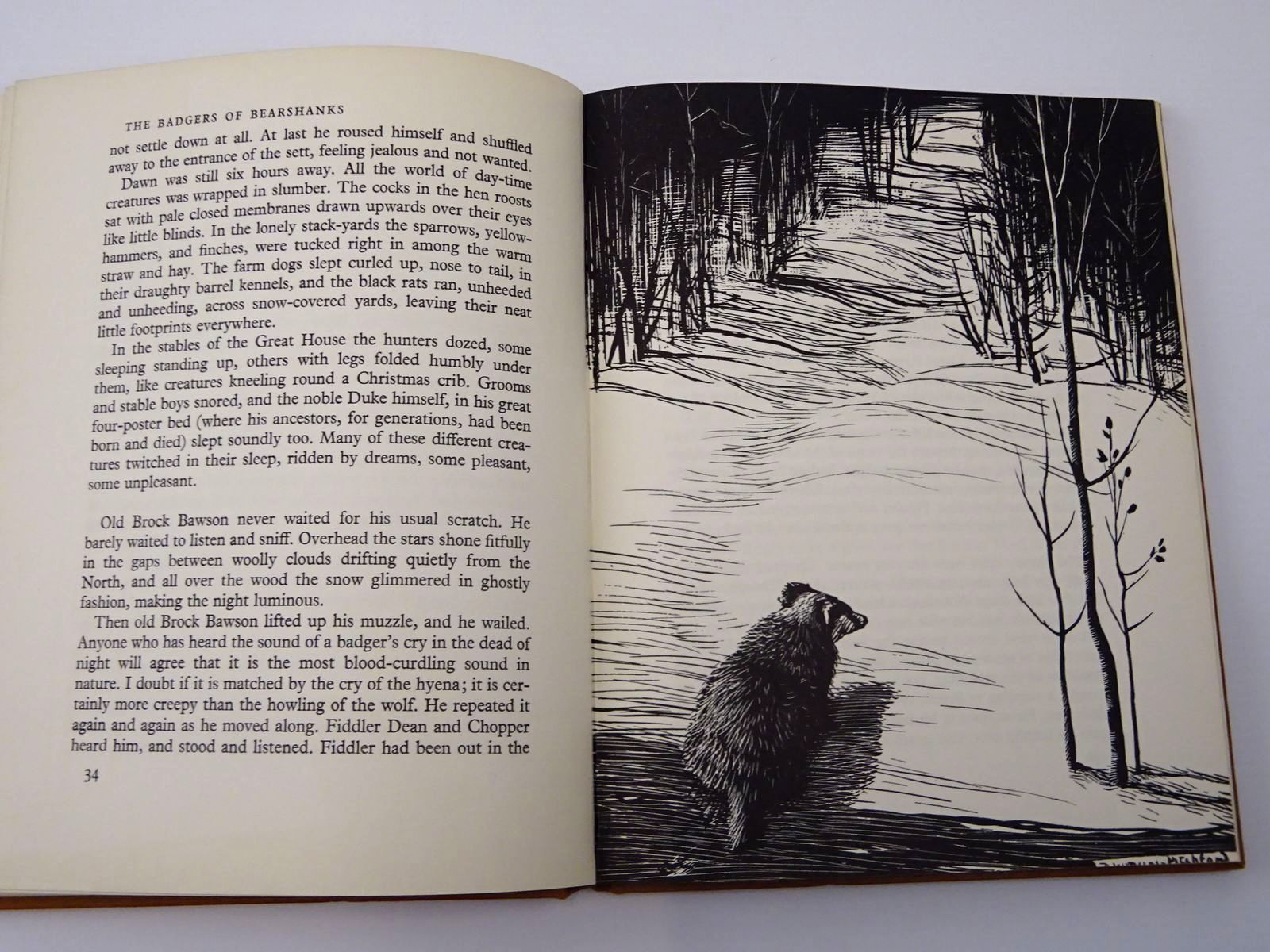 Photo of THE BADGERS OF BEARSHANKS written by BB,  illustrated by BB,  published by Ernest Benn Limited (STOCK CODE: 2129408)  for sale by Stella & Rose's Books