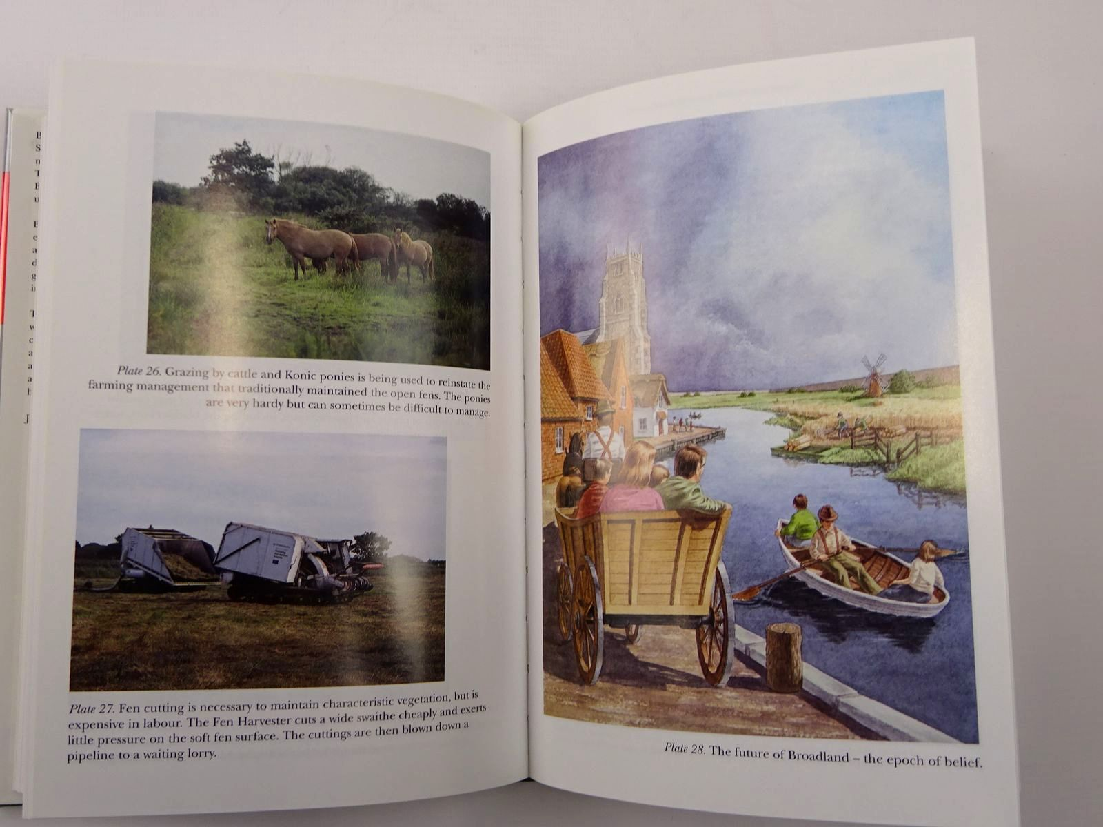 Photo of THE BROADS (NN 89) written by Moss, Brian published by Harper Collins (STOCK CODE: 2129628)  for sale by Stella & Rose's Books