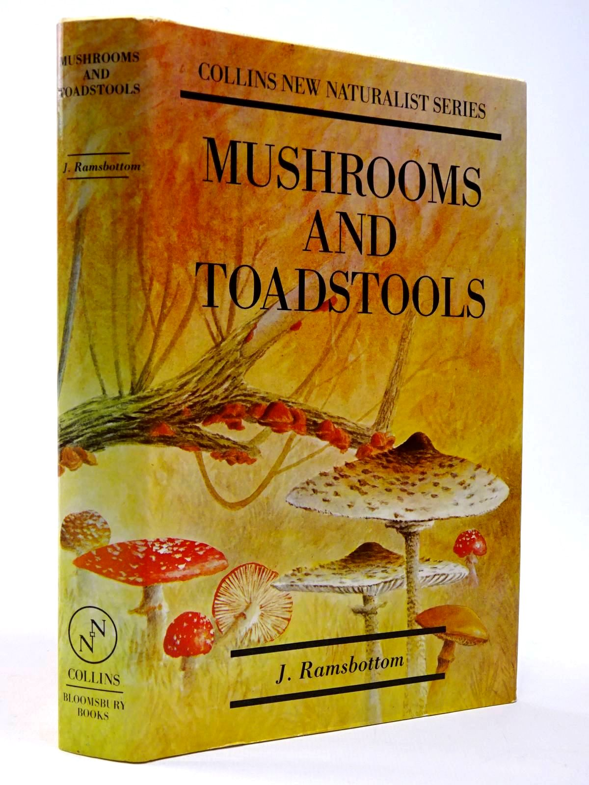Photo of MUSHROOMS AND TOADSTOOLS (NN 7)- Stock Number: 2130000