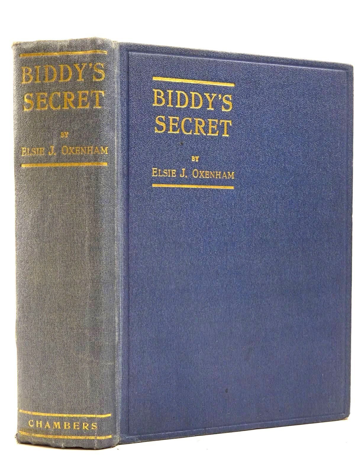Photo of BIDDY'S SECRET- Stock Number: 2130271