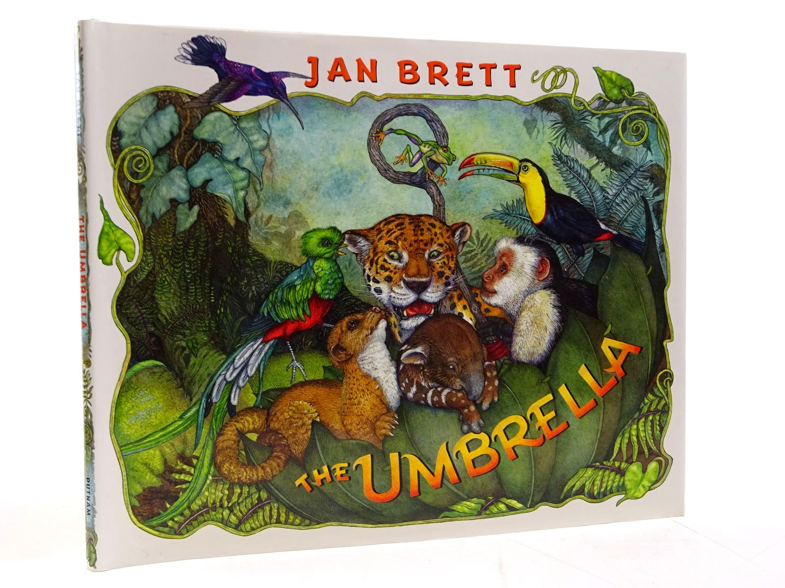 Photo of THE UMBRELLA written by Brett, Jan illustrated by Brett, Jan published by G.P. Putnam's Sons (STOCK CODE: 2130798)  for sale by Stella & Rose's Books