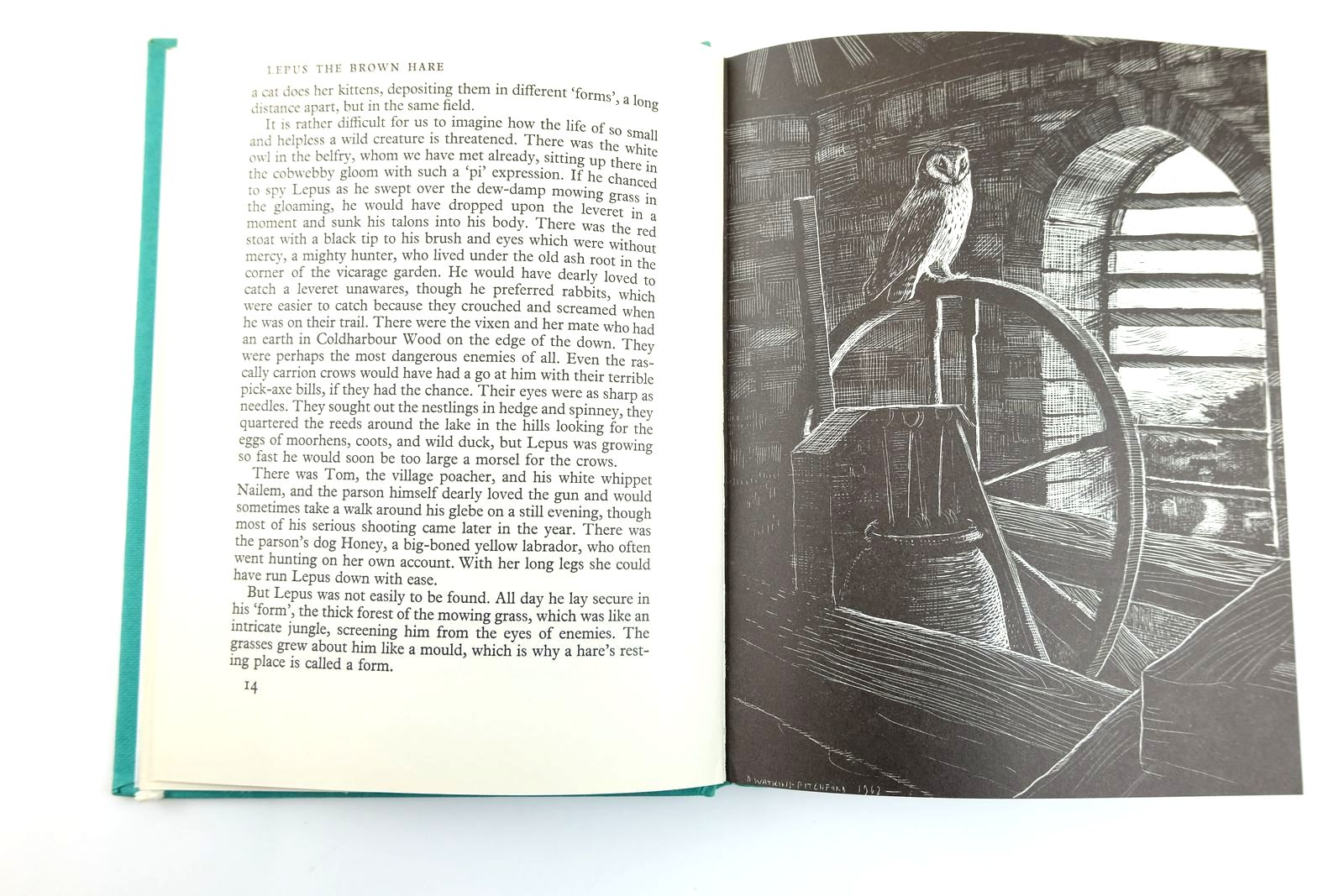 Photo of LEPUS THE BROWN HARE written by BB,  illustrated by BB,  published by Ernest Benn Limited (STOCK CODE: 2131770)  for sale by Stella & Rose's Books