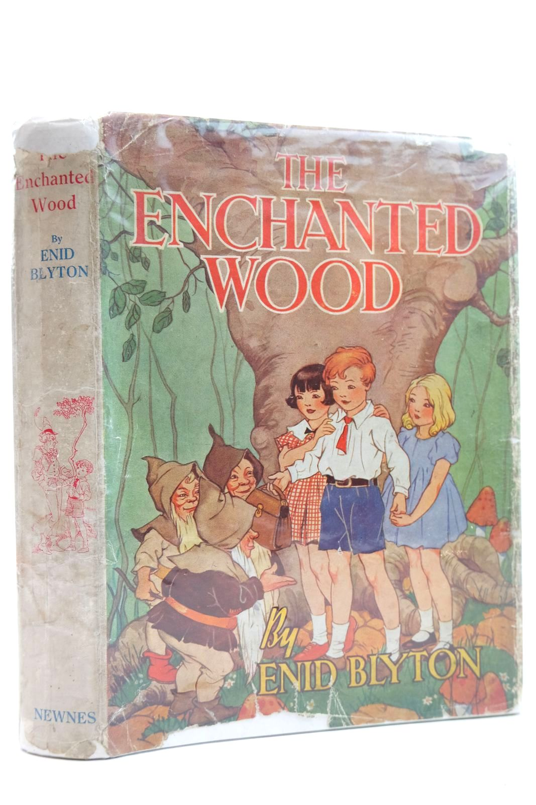 Photo of THE ENCHANTED WOOD