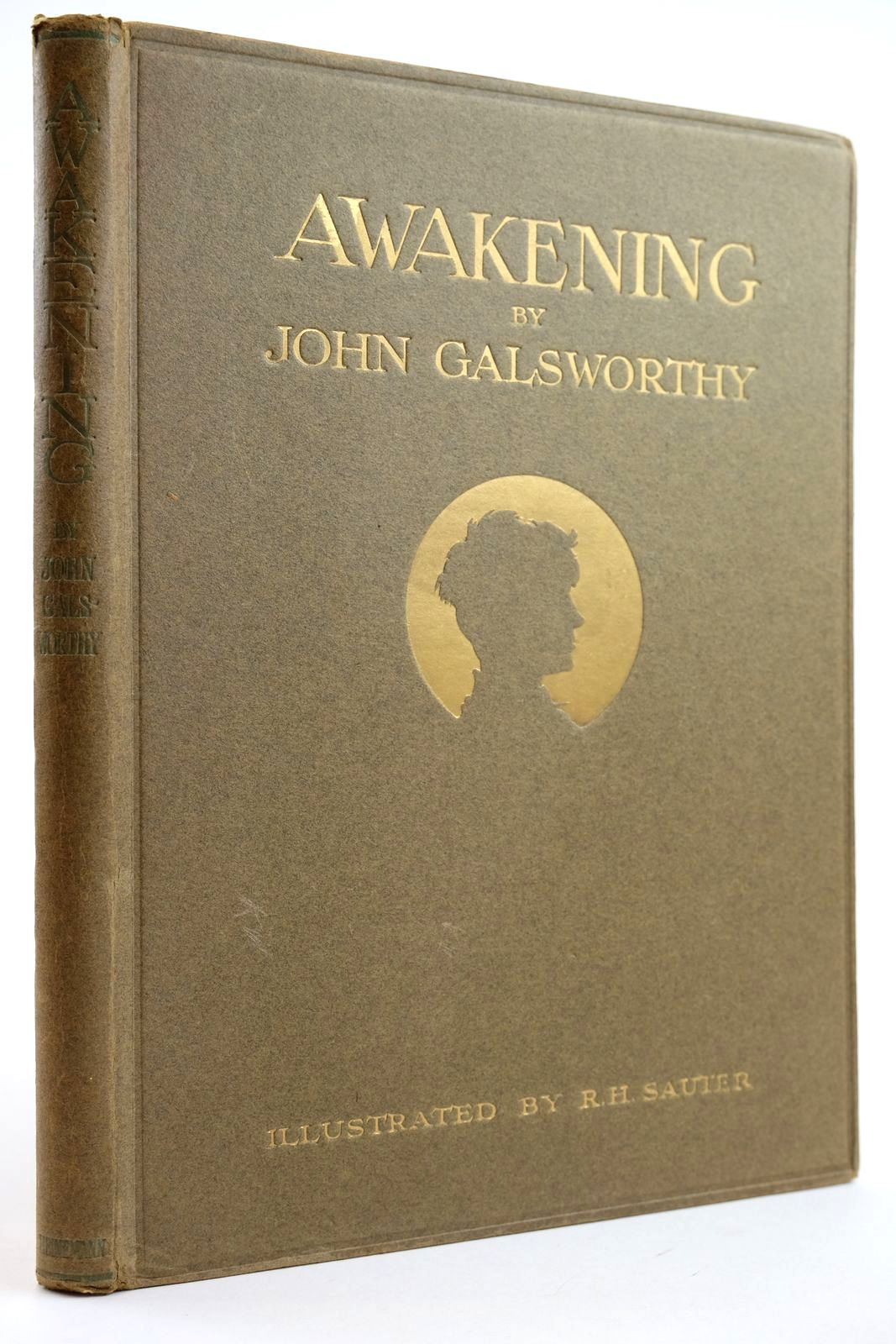Photo of AWAKENING- Stock Number: 2132132